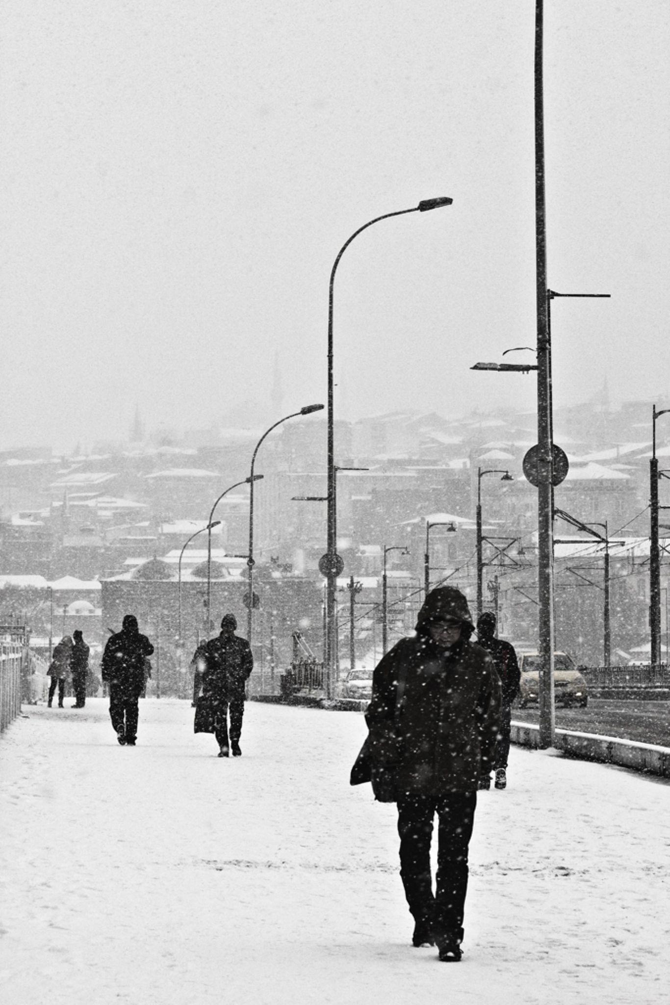 winter by hllpl