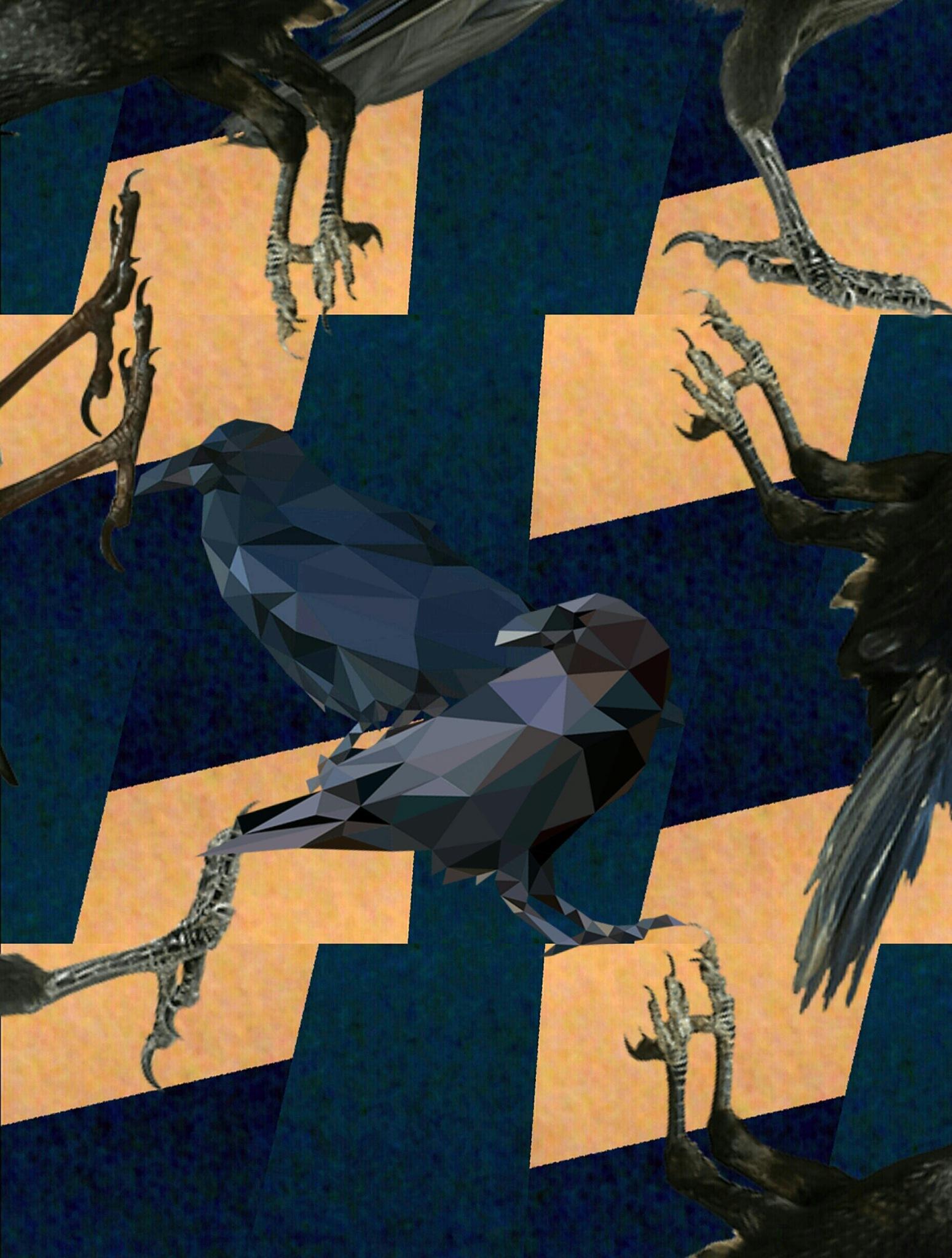 Crow's Feet  by Bernadette Rivera