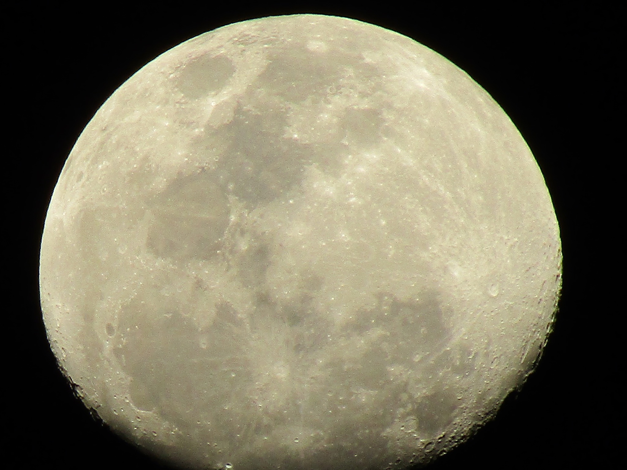 moon light by Novito