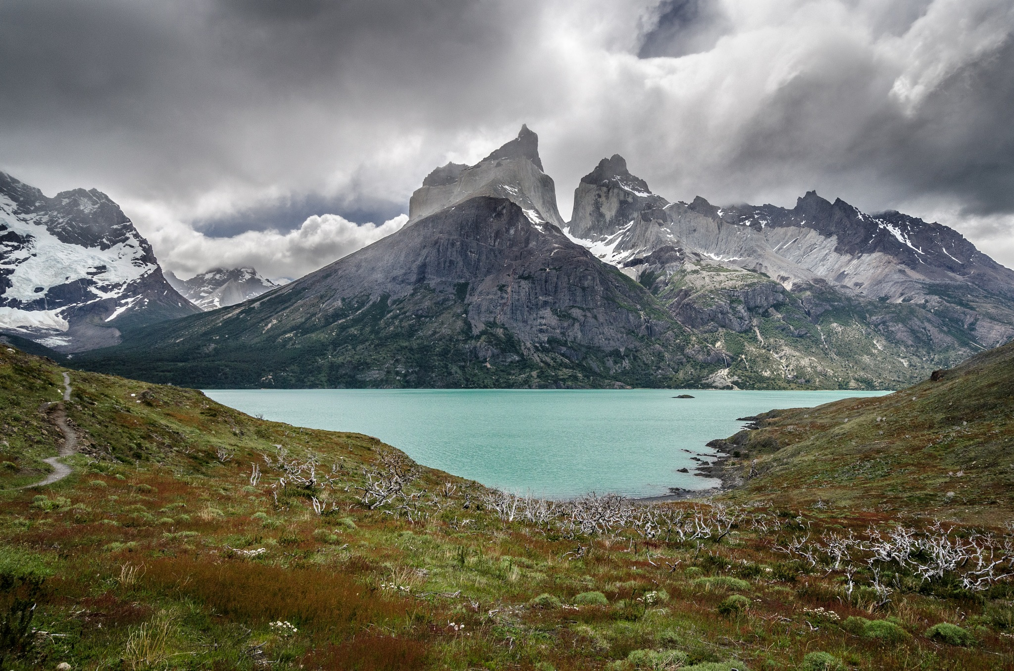 Torres del Paine by Ronne Vinkx