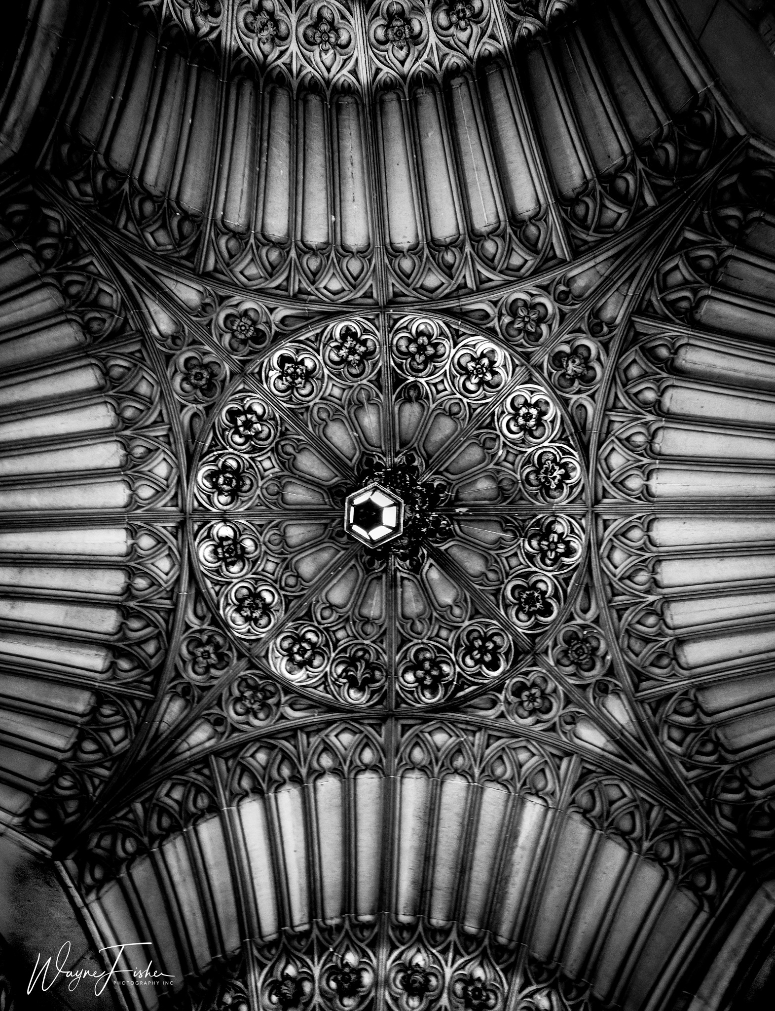 Ornate by Wayne Fisher Photography Inc