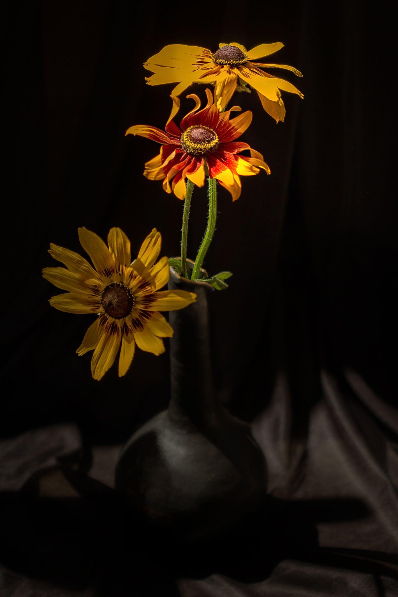 Fire flower by Rucsandra Calin