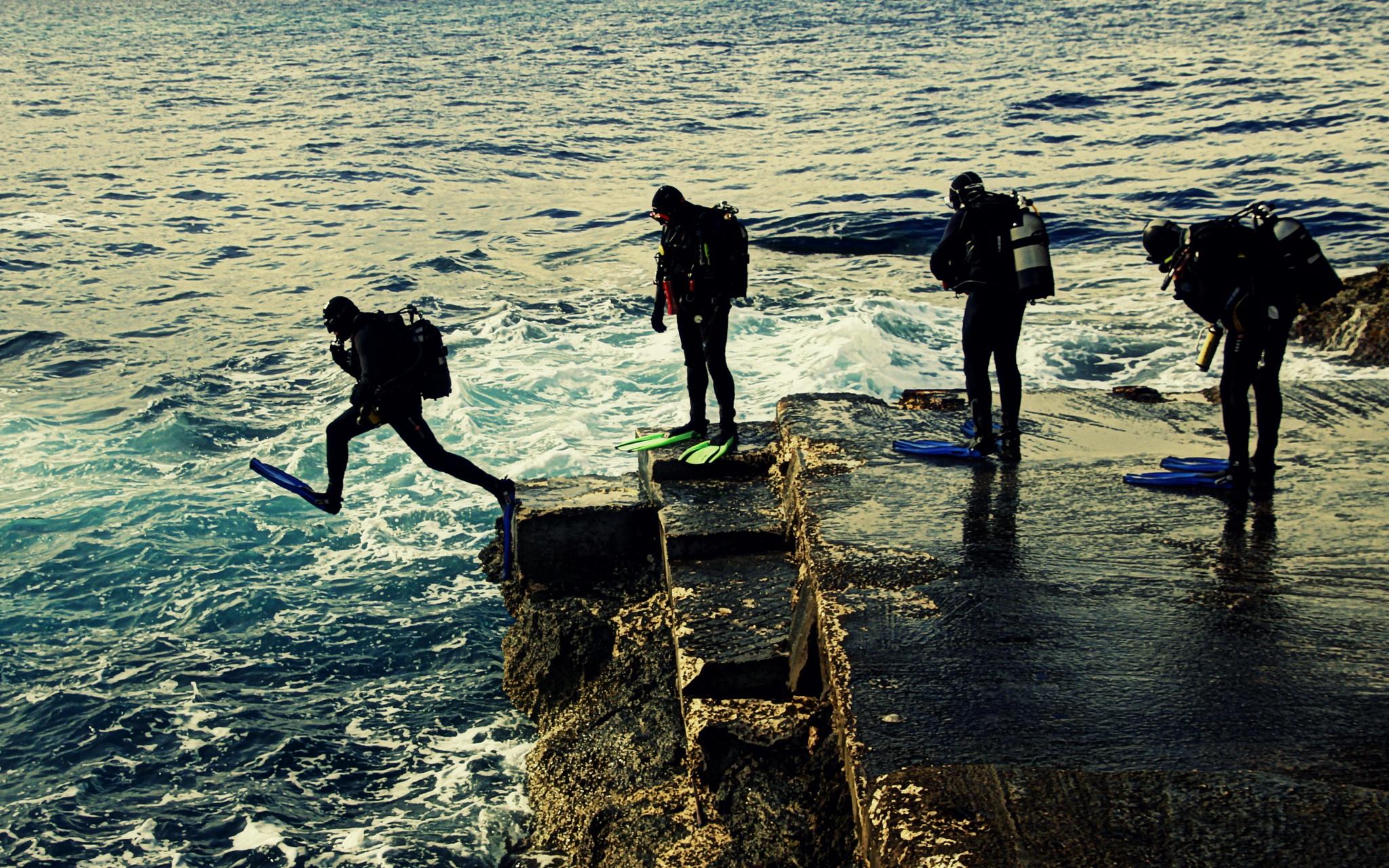 Dive in.... by Gordon Philip Barbara