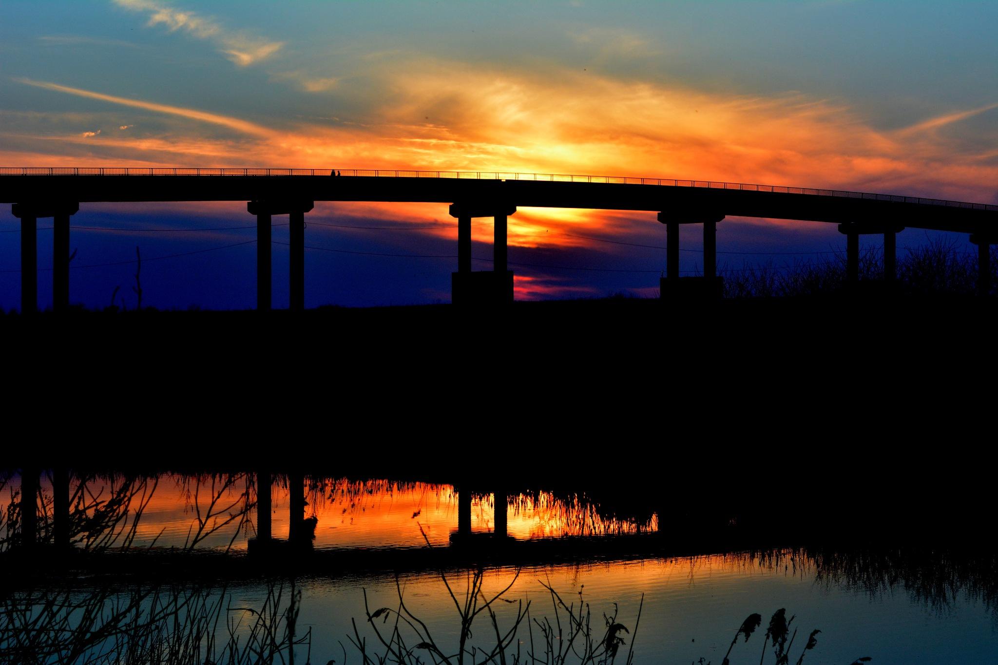 Bridge by AdinaVoicu