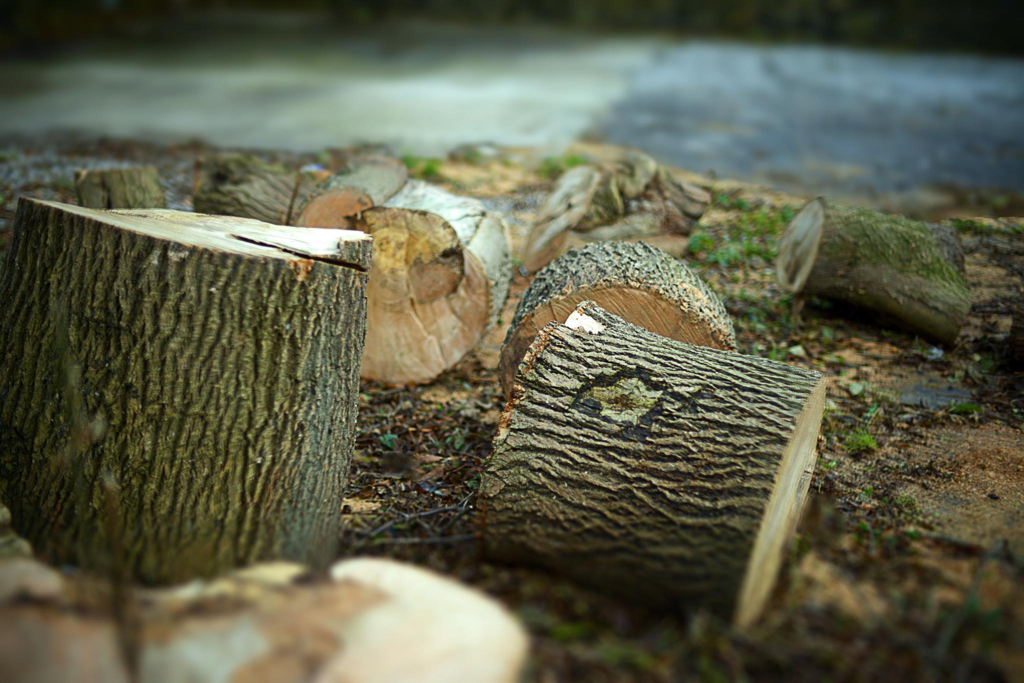 Firewood by goodadvice.com