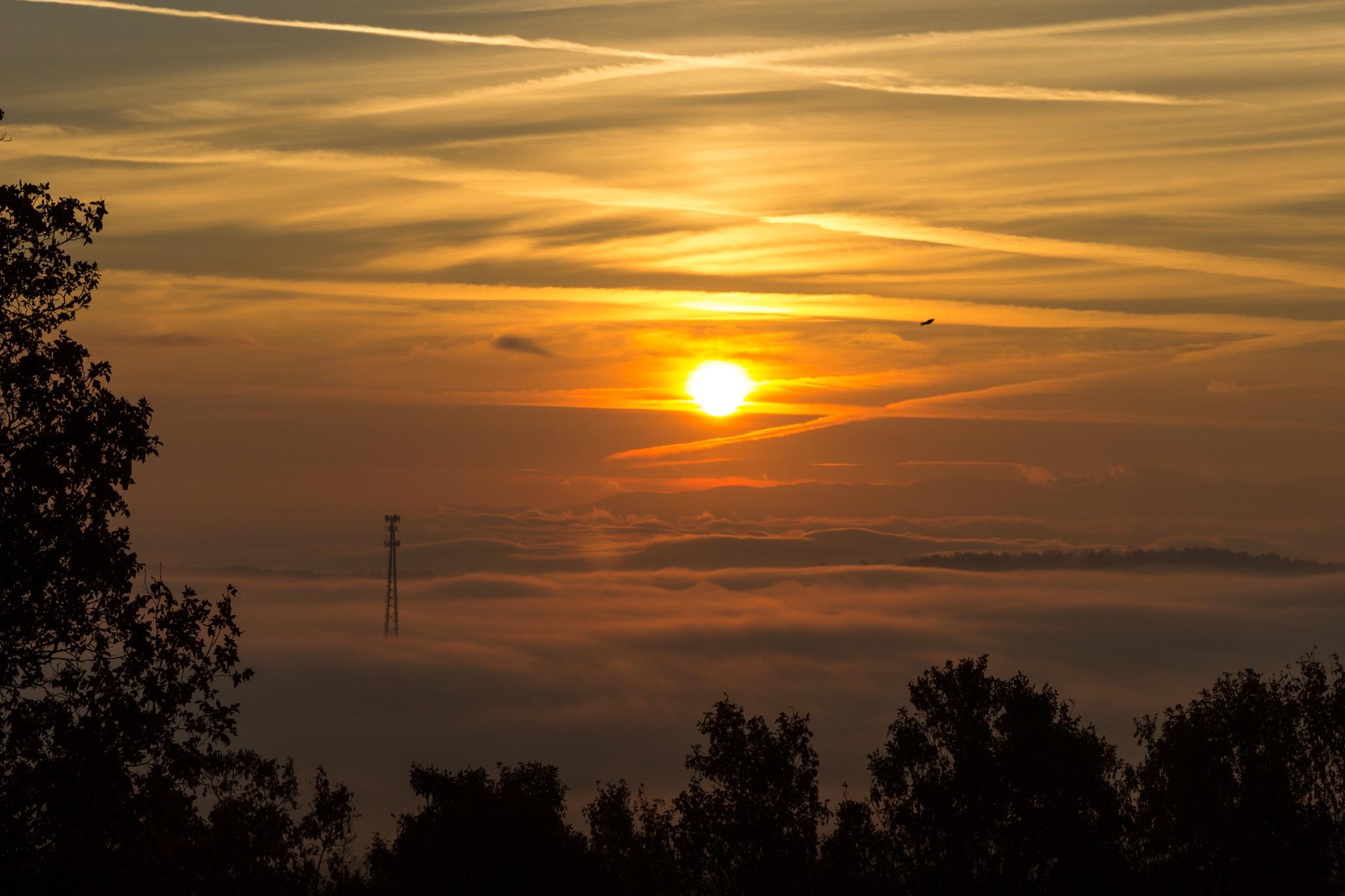 Cohutta Sunrise by Cameron Goins
