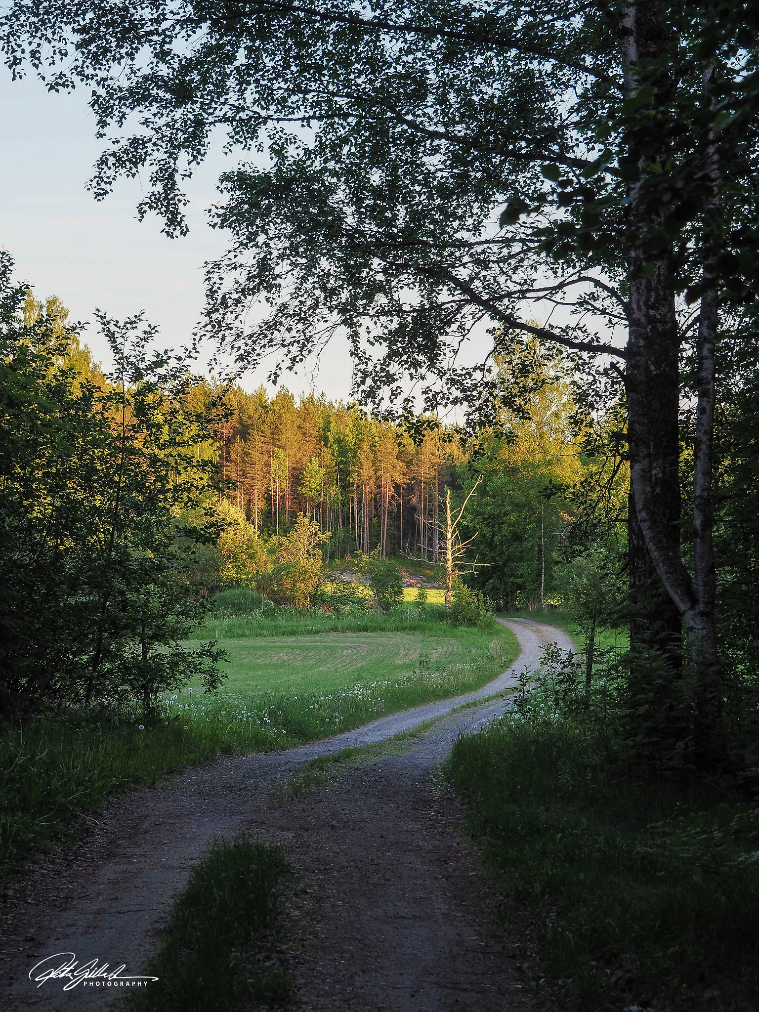 June evening by Ritva Sillanmäki  Photography