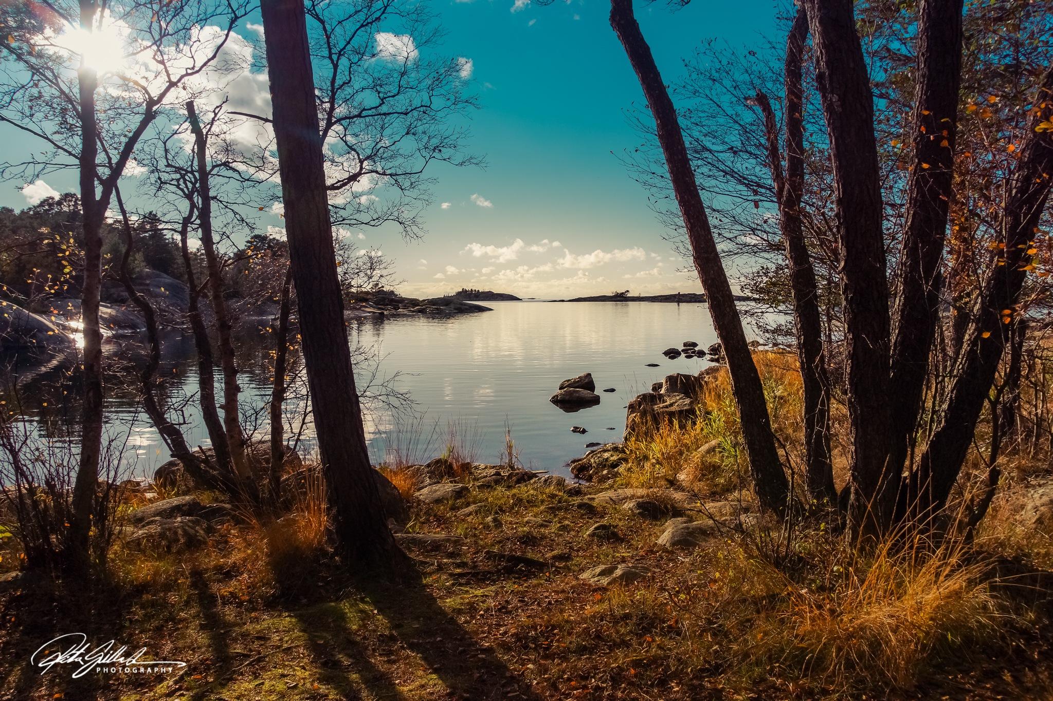 Light and shadows by Ritva Sillanmäki  Photography