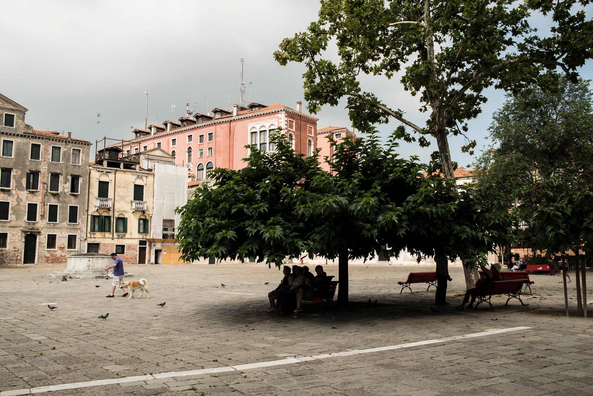 Al riparo by Alessandro Longo