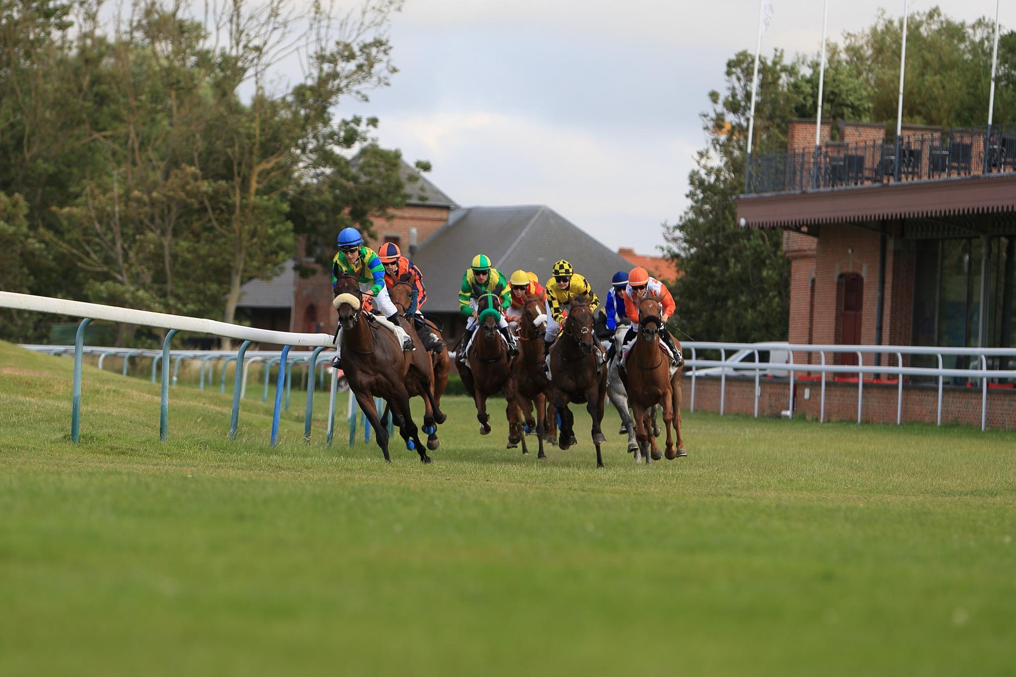 horse race by Danny Passchyn