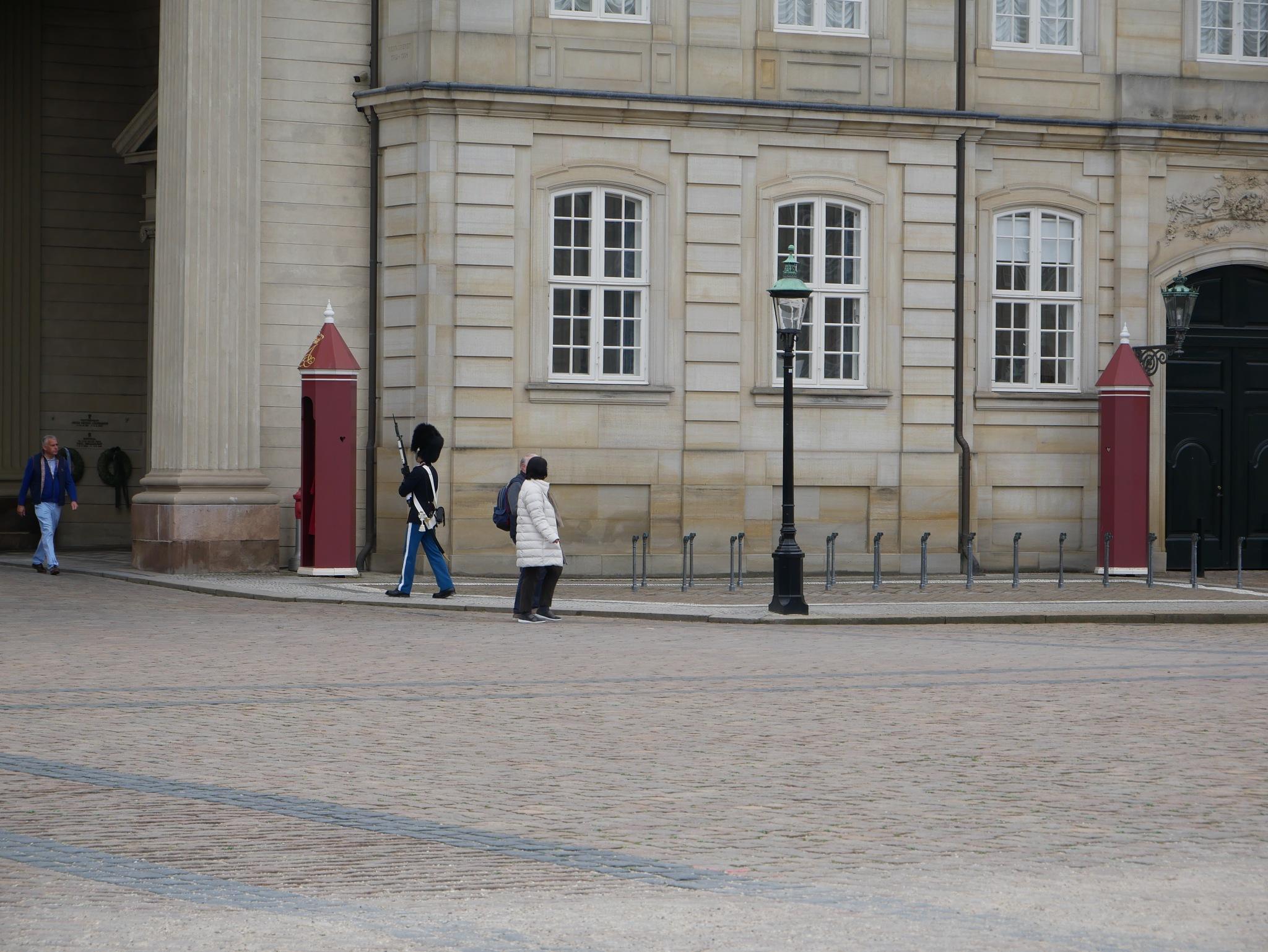 Guarding the Danish Queen's Palace in Copenhagen  by John Chilver