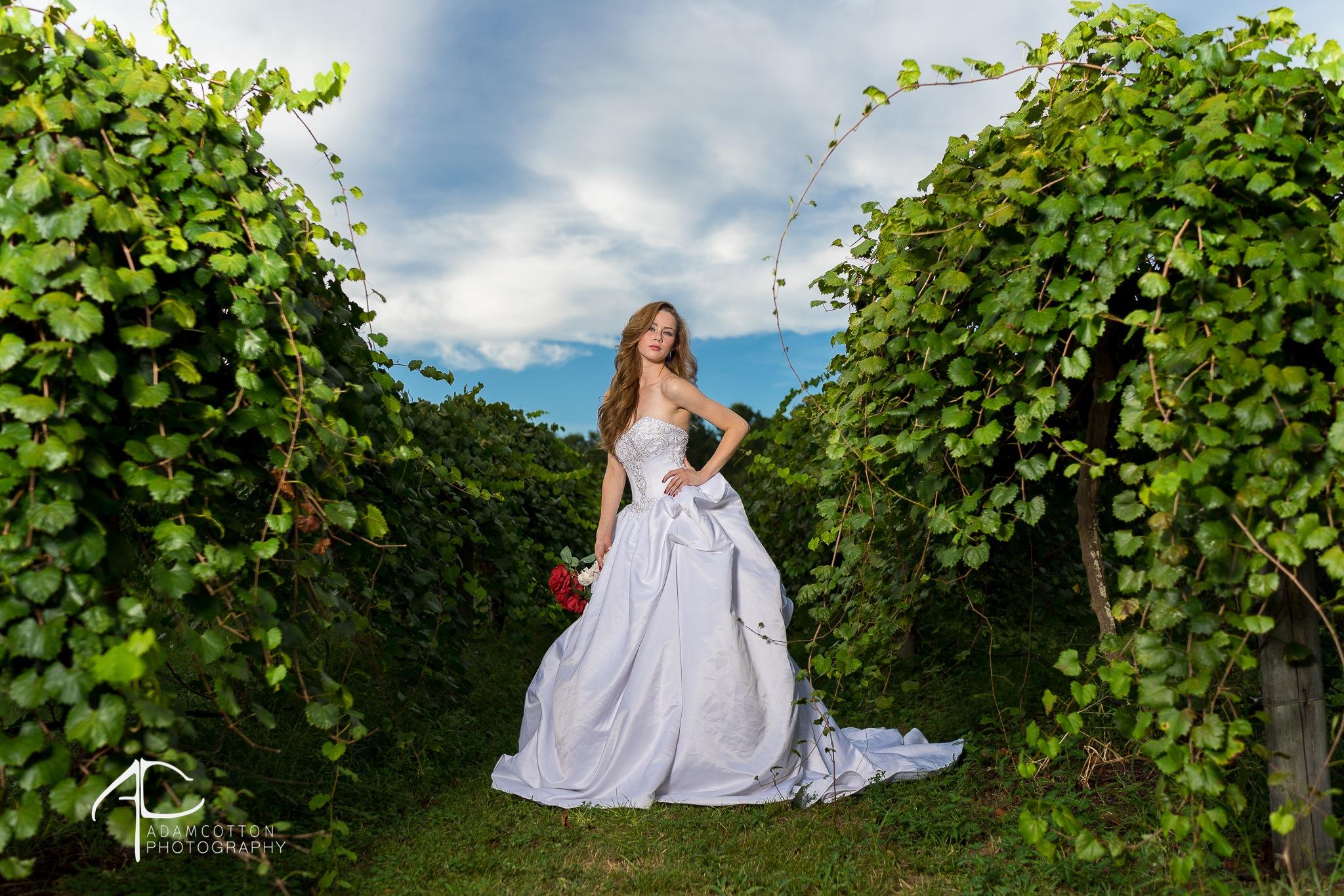 Wedding_bridals_vineyard by Adam Cotton