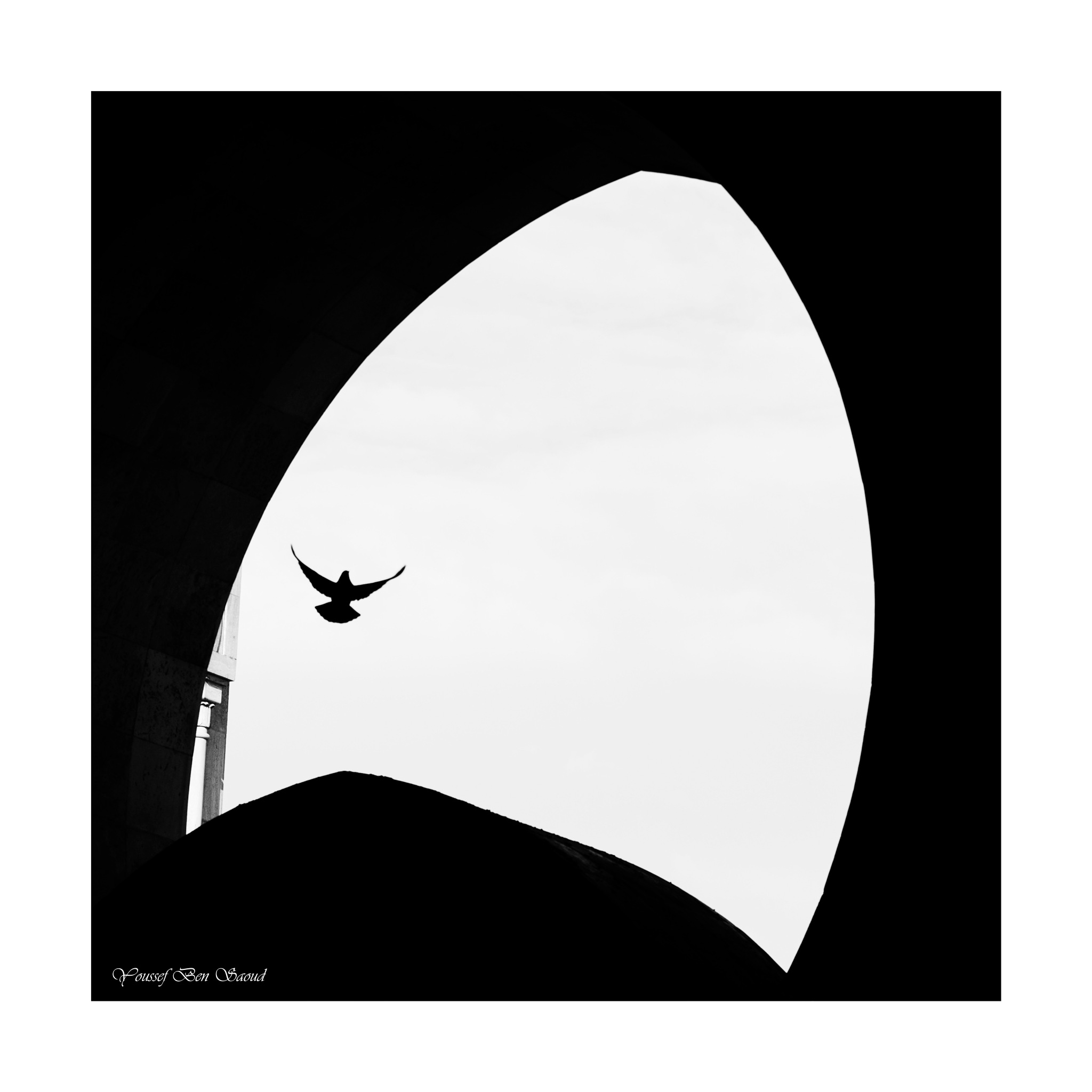 Go higher... by Youssef Ben Saoud