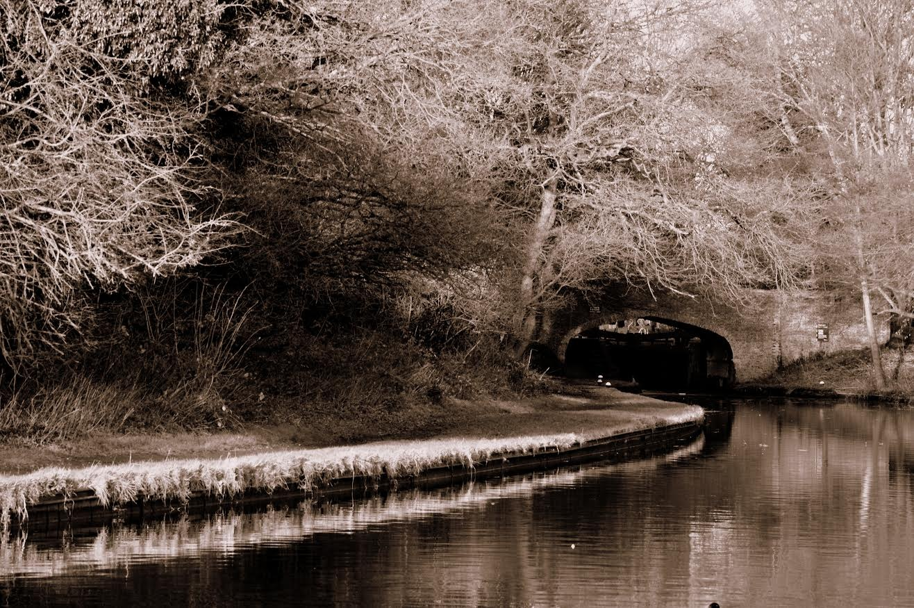 Along the canal by Tamara