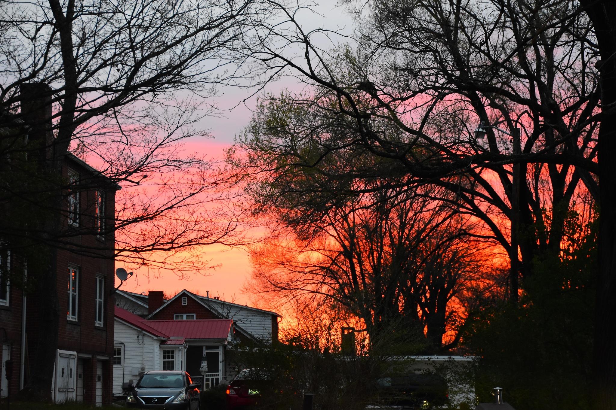 Sunrise 1 March 17 by Greg Knott