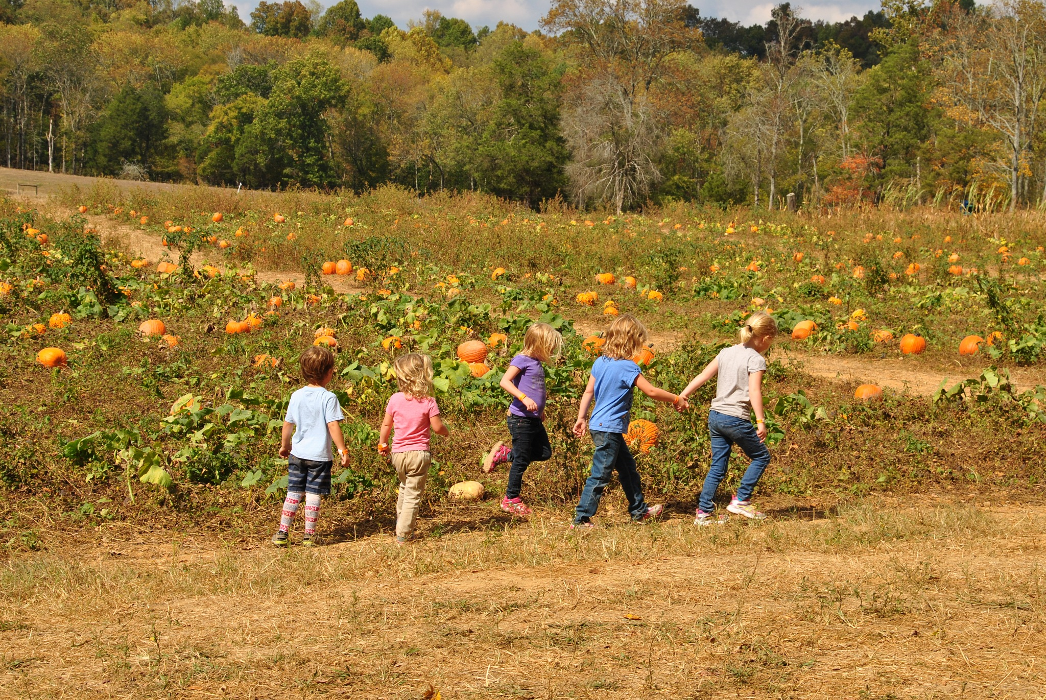 Grands at Pumpkin Patch by Greg Knott