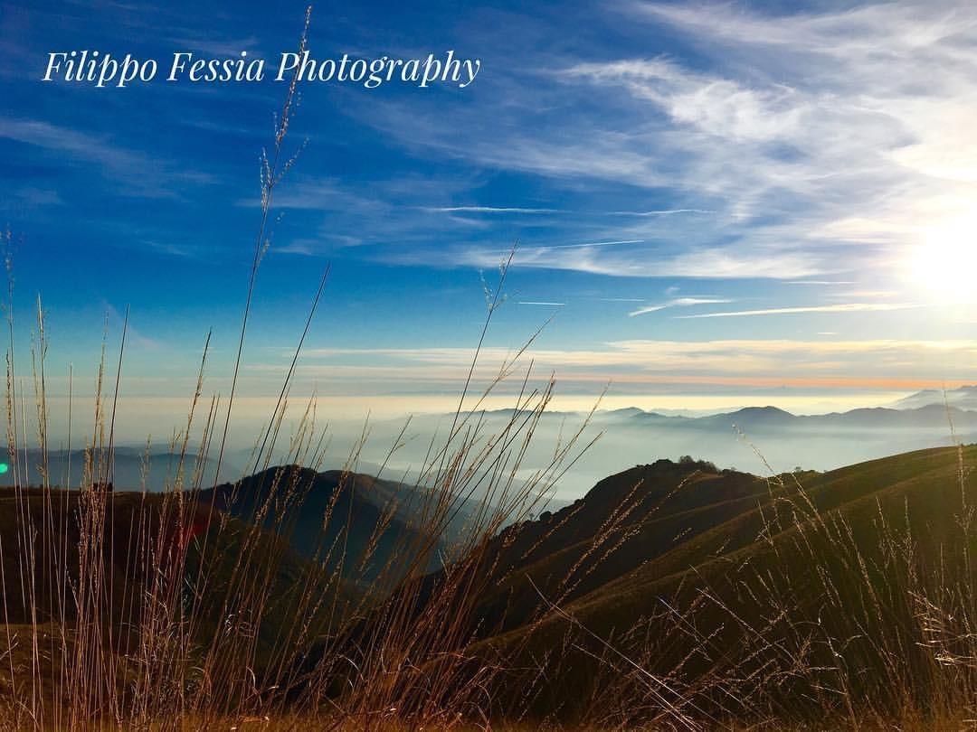 Italian Landscape:   Mottarone, Piemonte  by Filippo Fessia