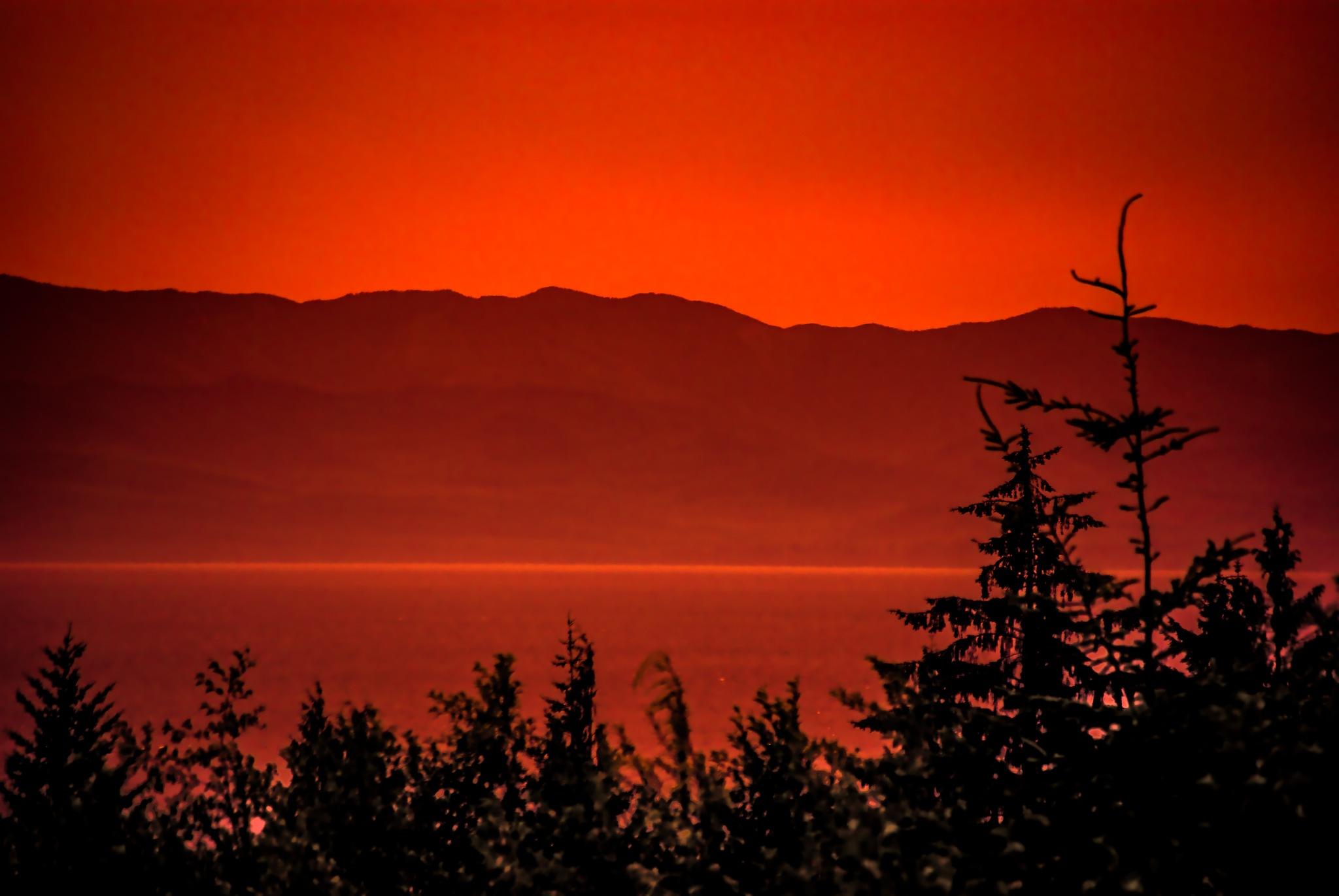 Dawn by Guillermo Sariñana Siller