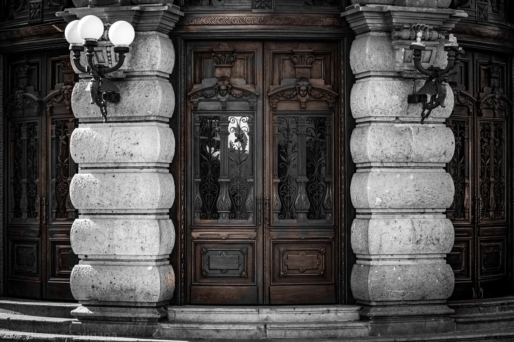 Old Door  by Guillermo Sariñana Siller