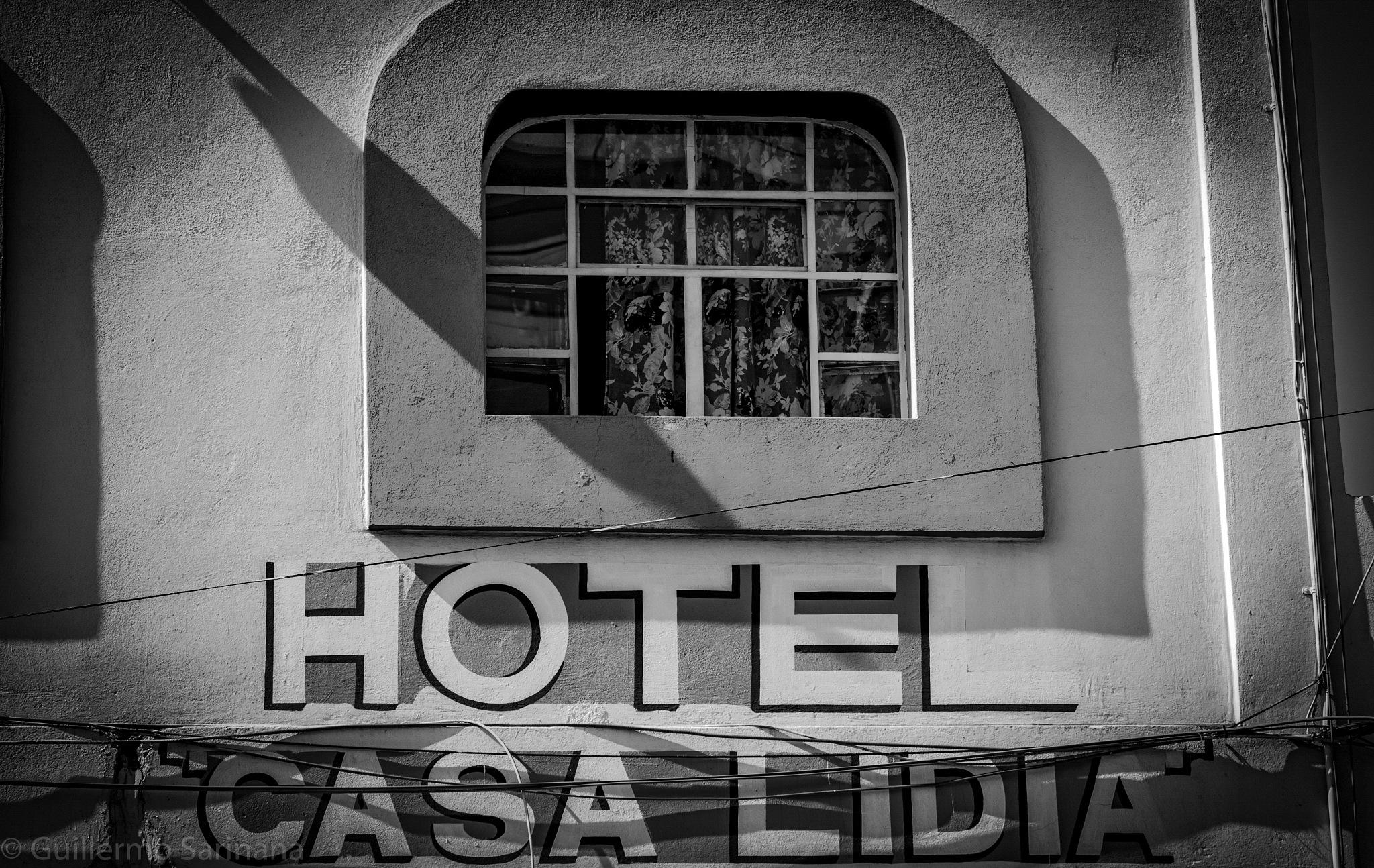 Windows by Guillermo Sariñana Siller