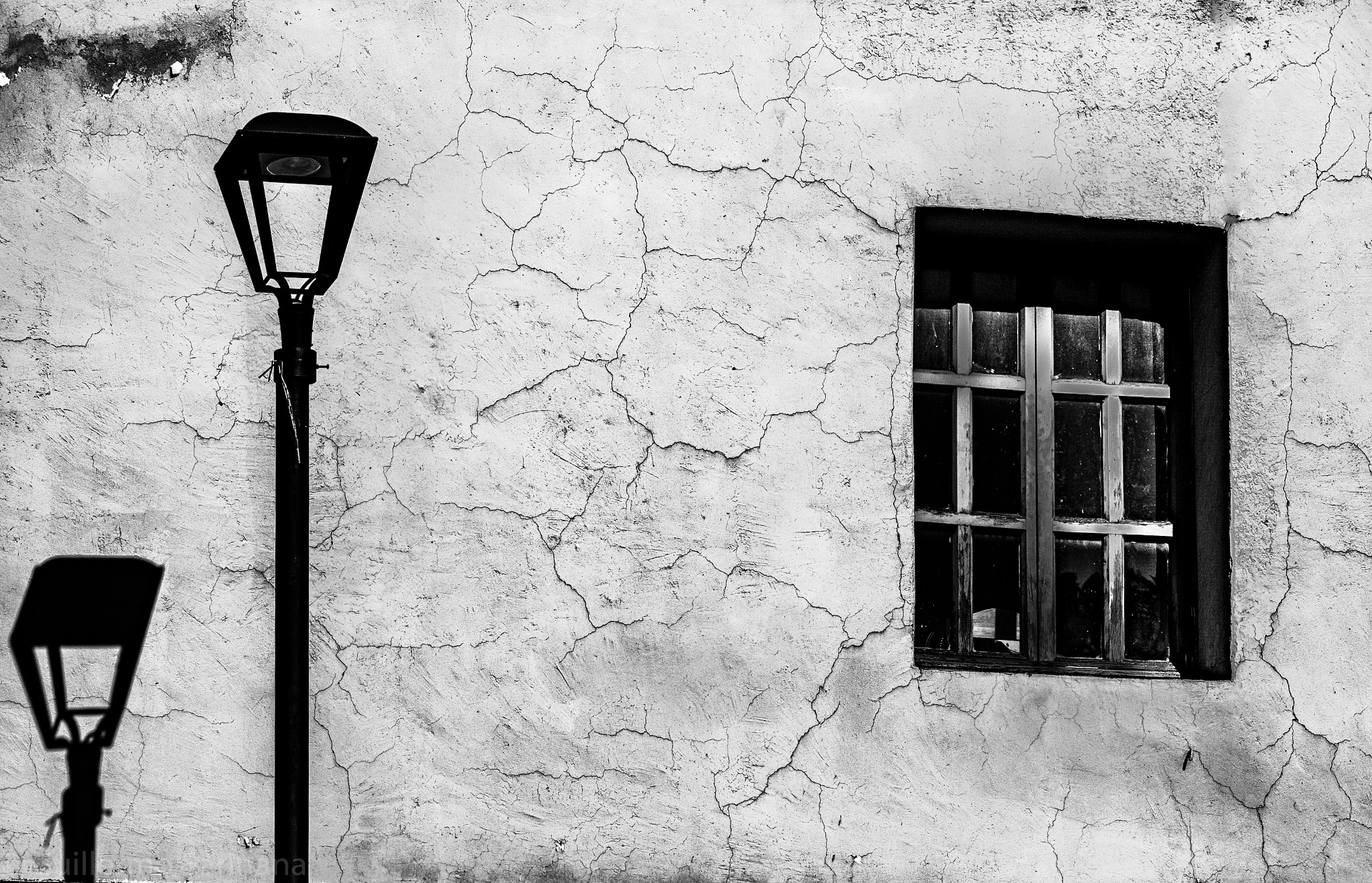 Windows by Guillermo Sariñana Siller