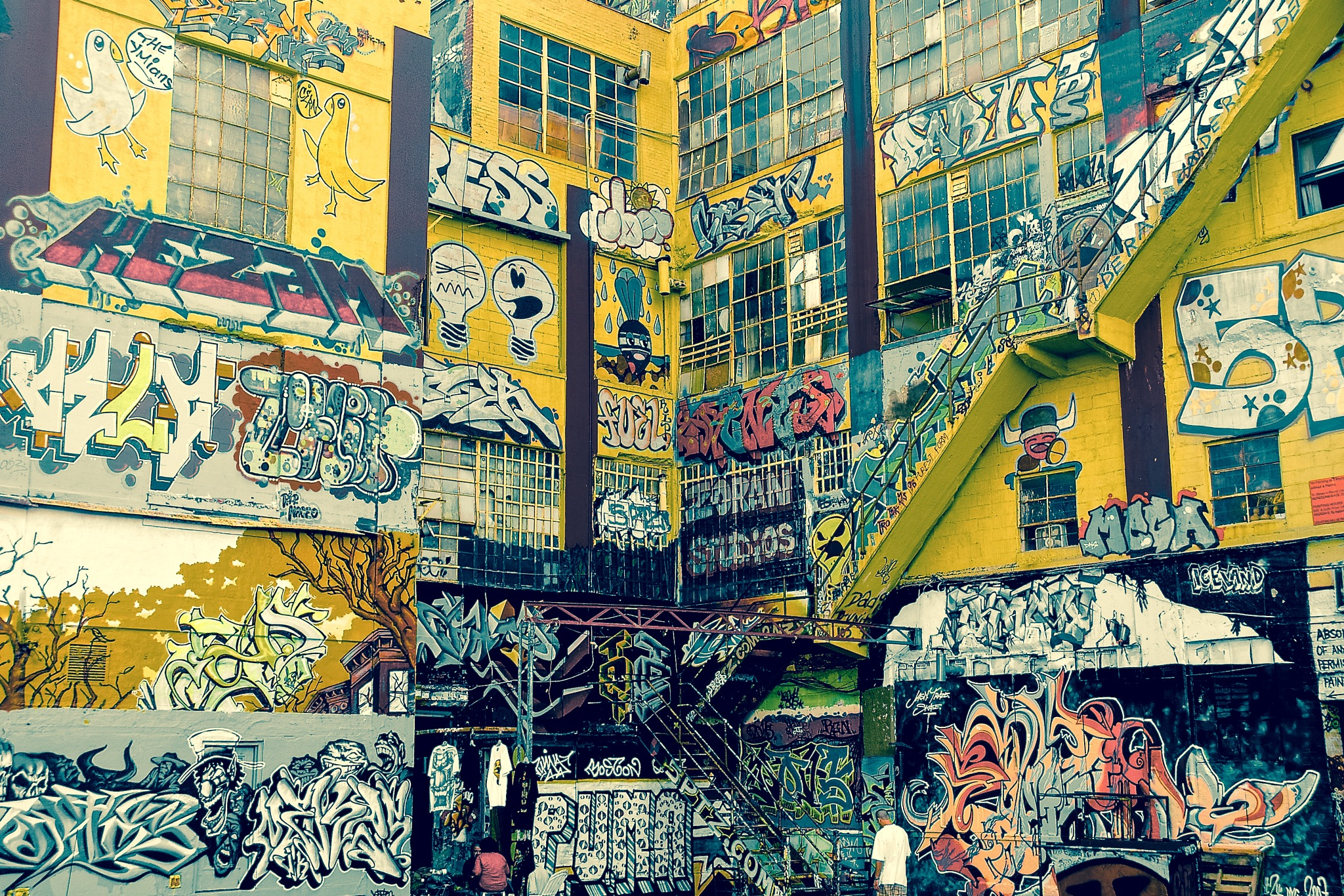 5 POINTZ by Casey DeCotis