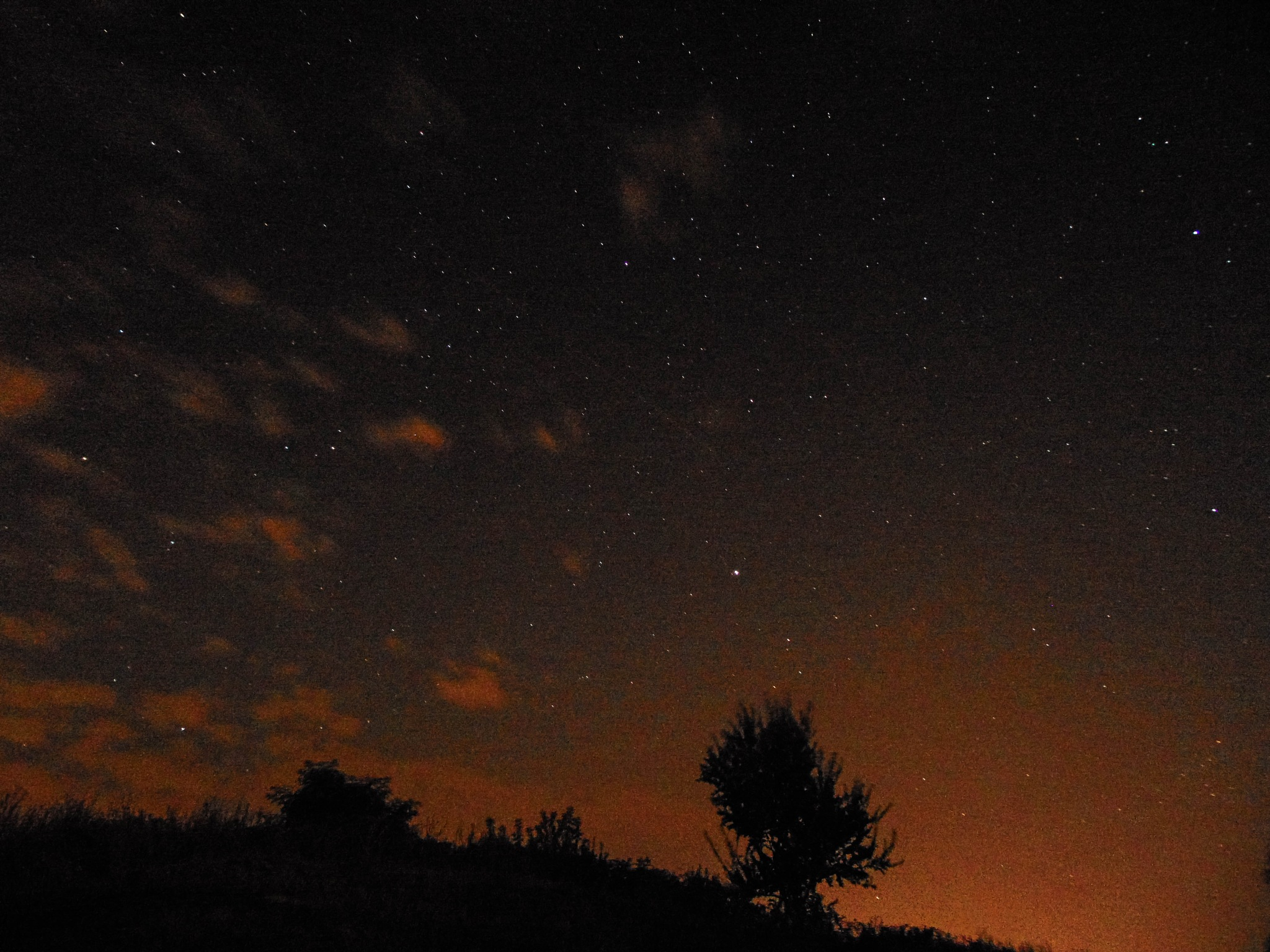 Stary Night by WolfHunter