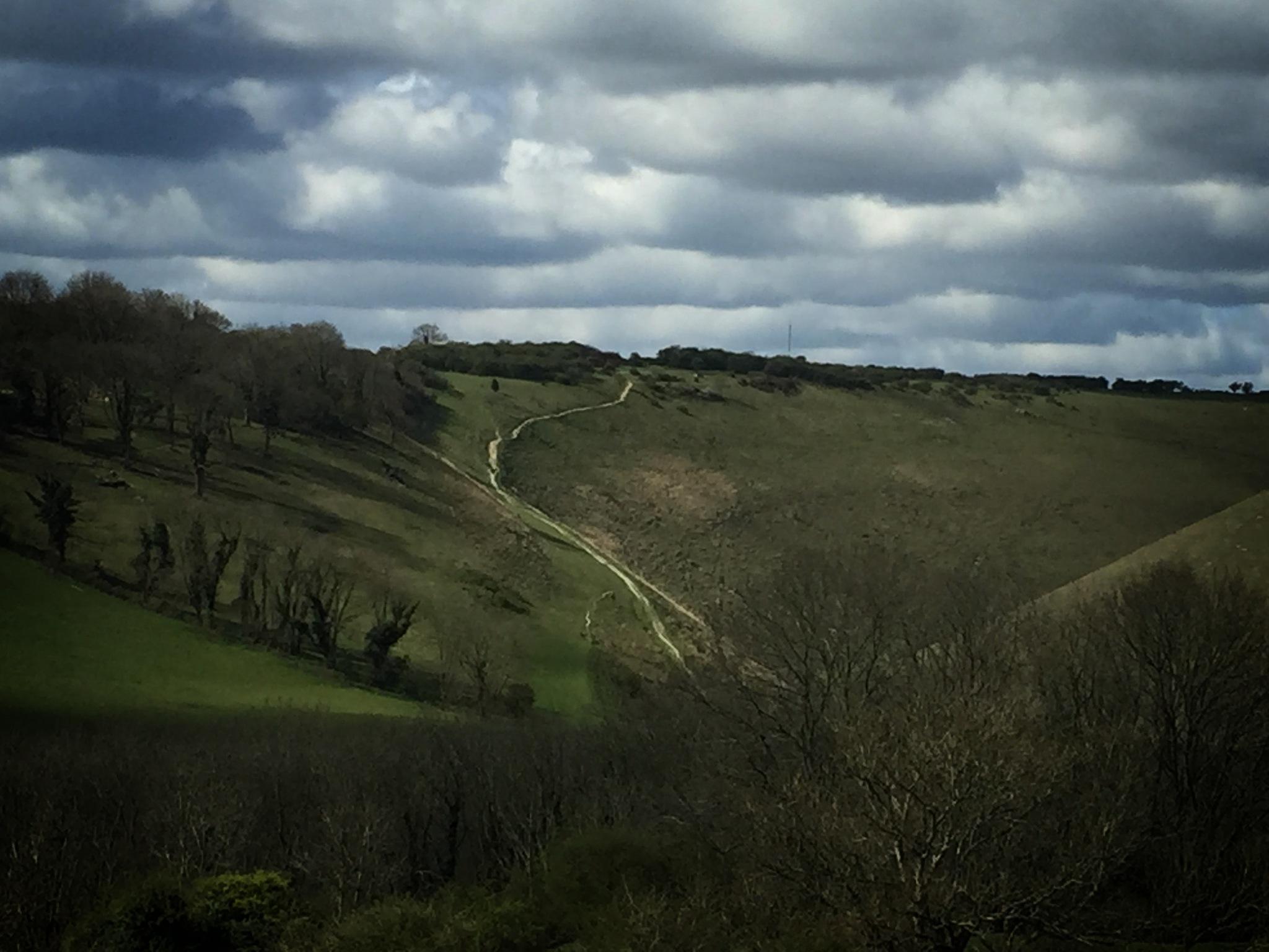Newtimber Hill by davidwardfilms