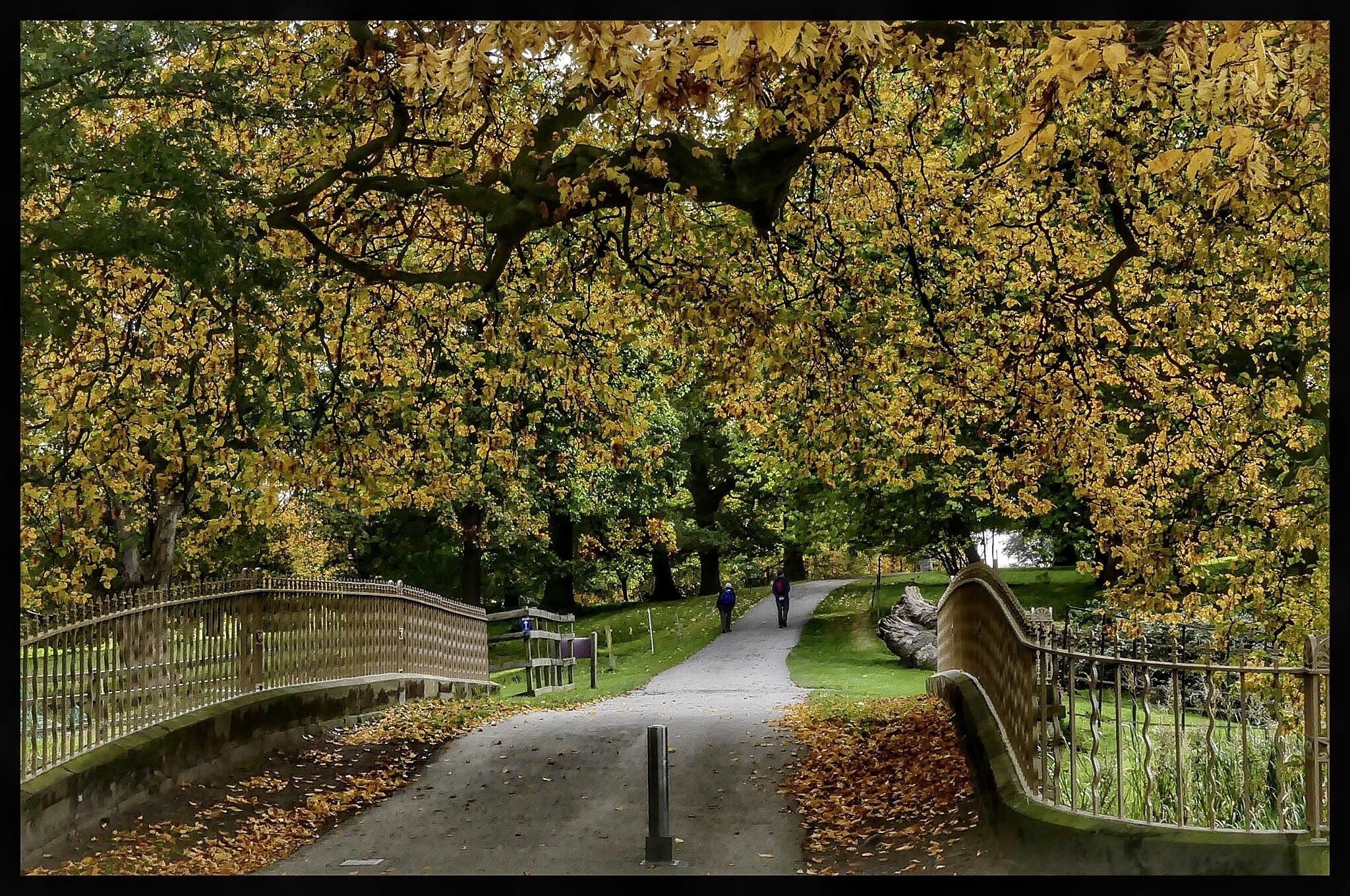 Autumn Time.. by JanSharp