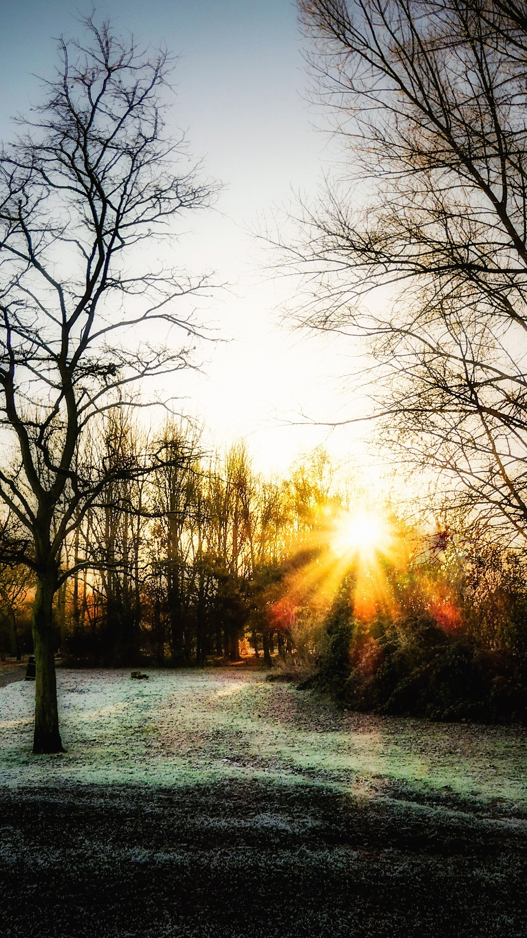 Sun kisses the Frost.. by JanSharp