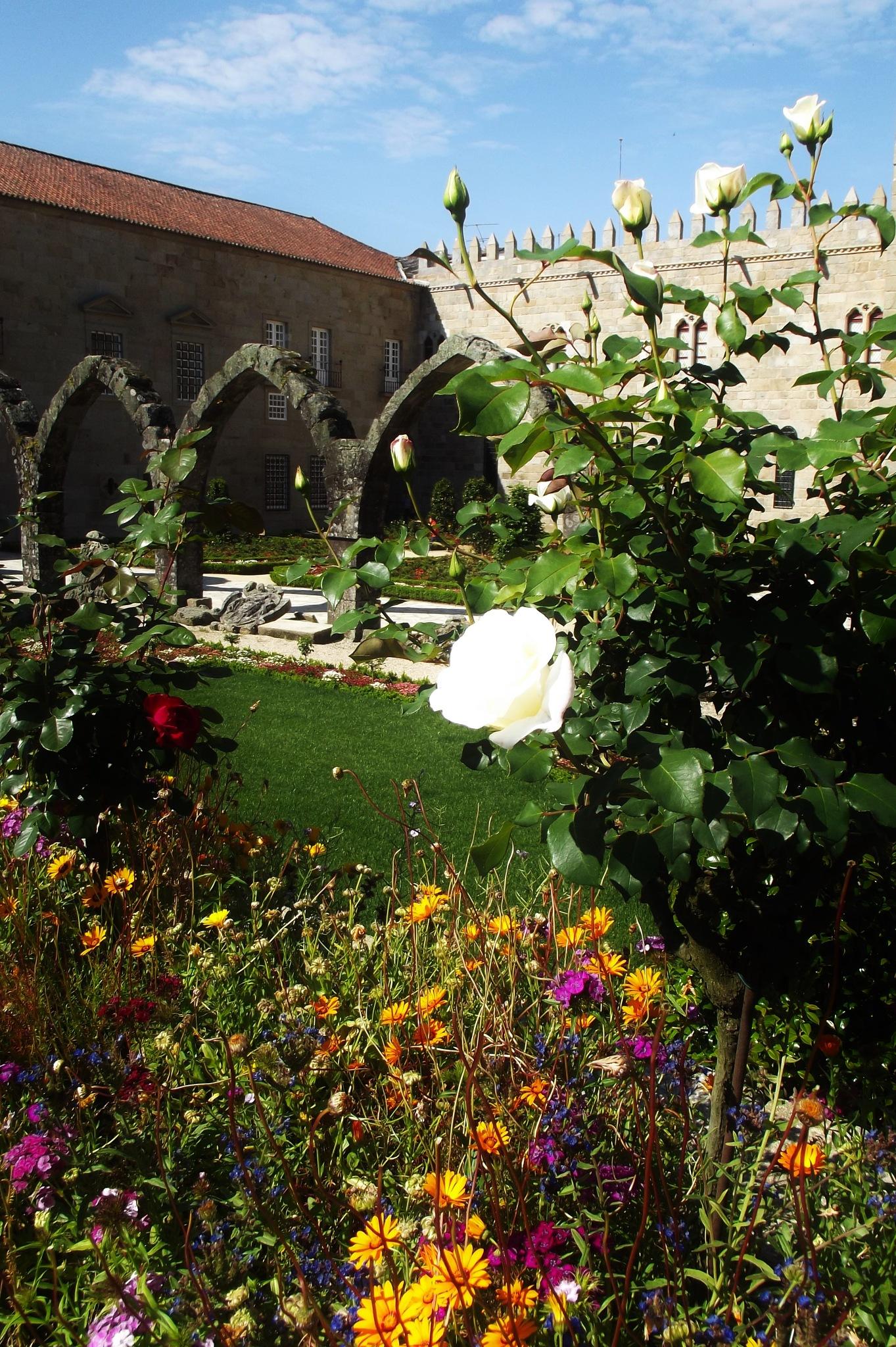 Garden by pattimatos
