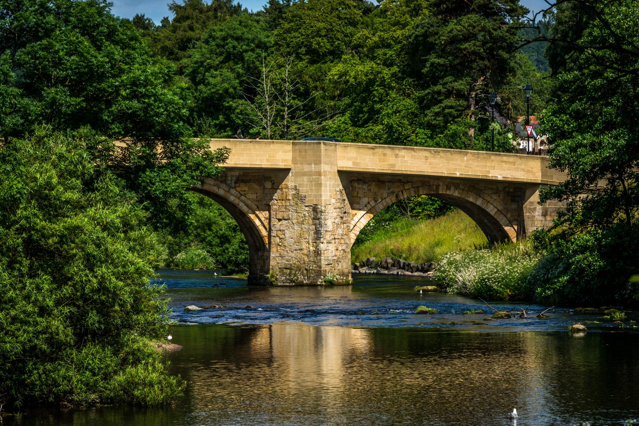 Photo in Nature #bridge #river #sky