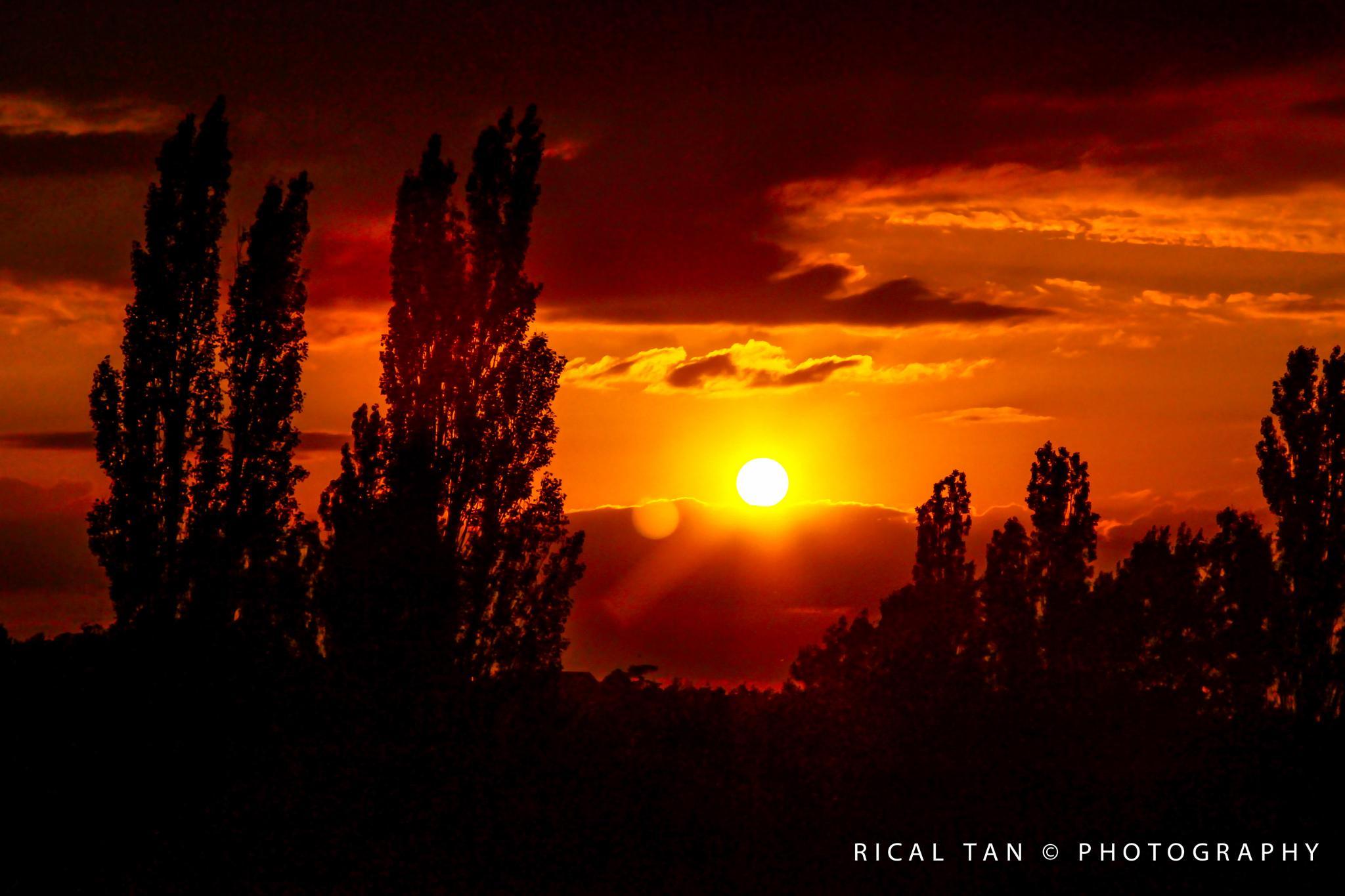 S U N S E T I N B A S I L D O N/ ESSEX by Rical Tan