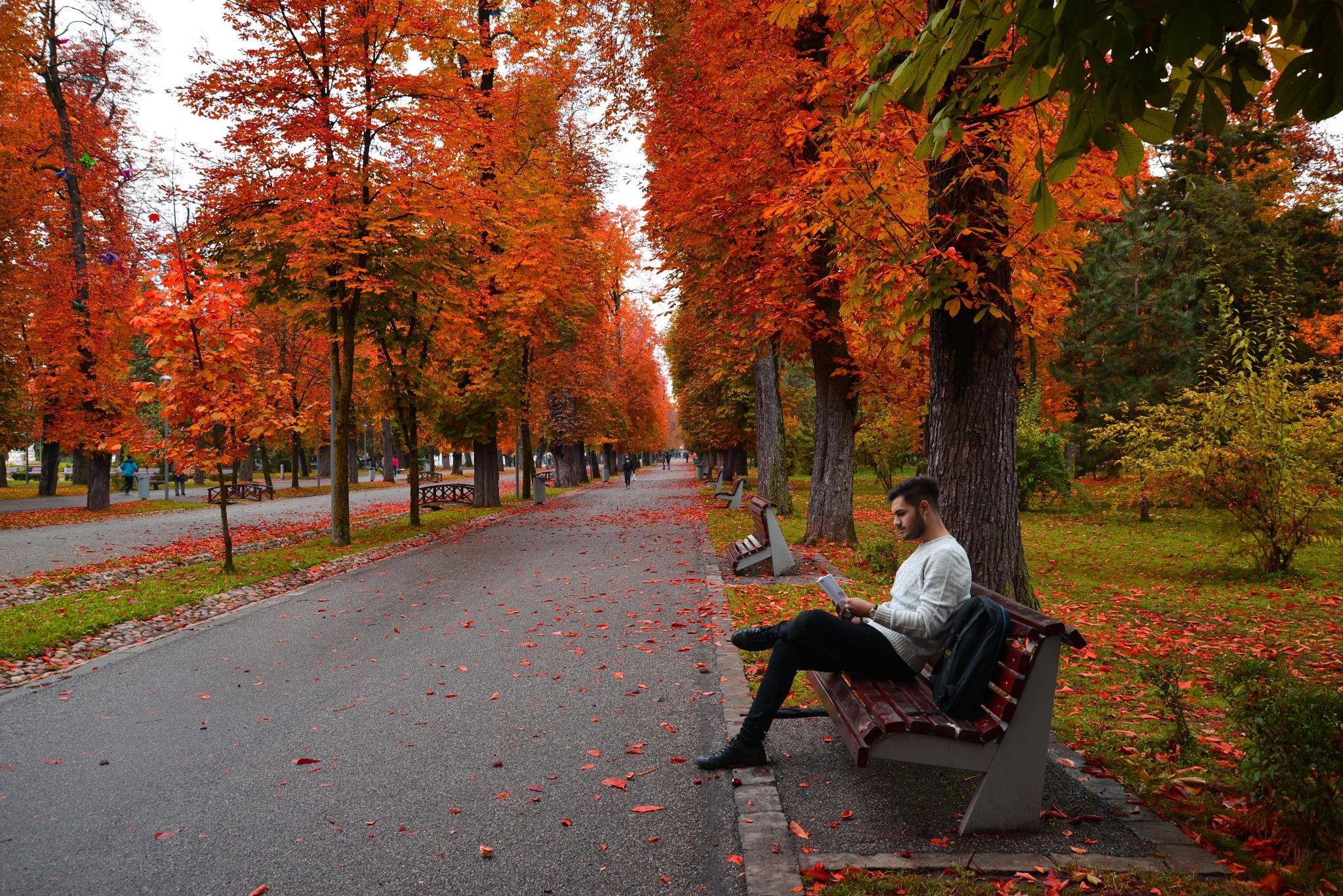 The best way to relax. by Ovidiu Bancila