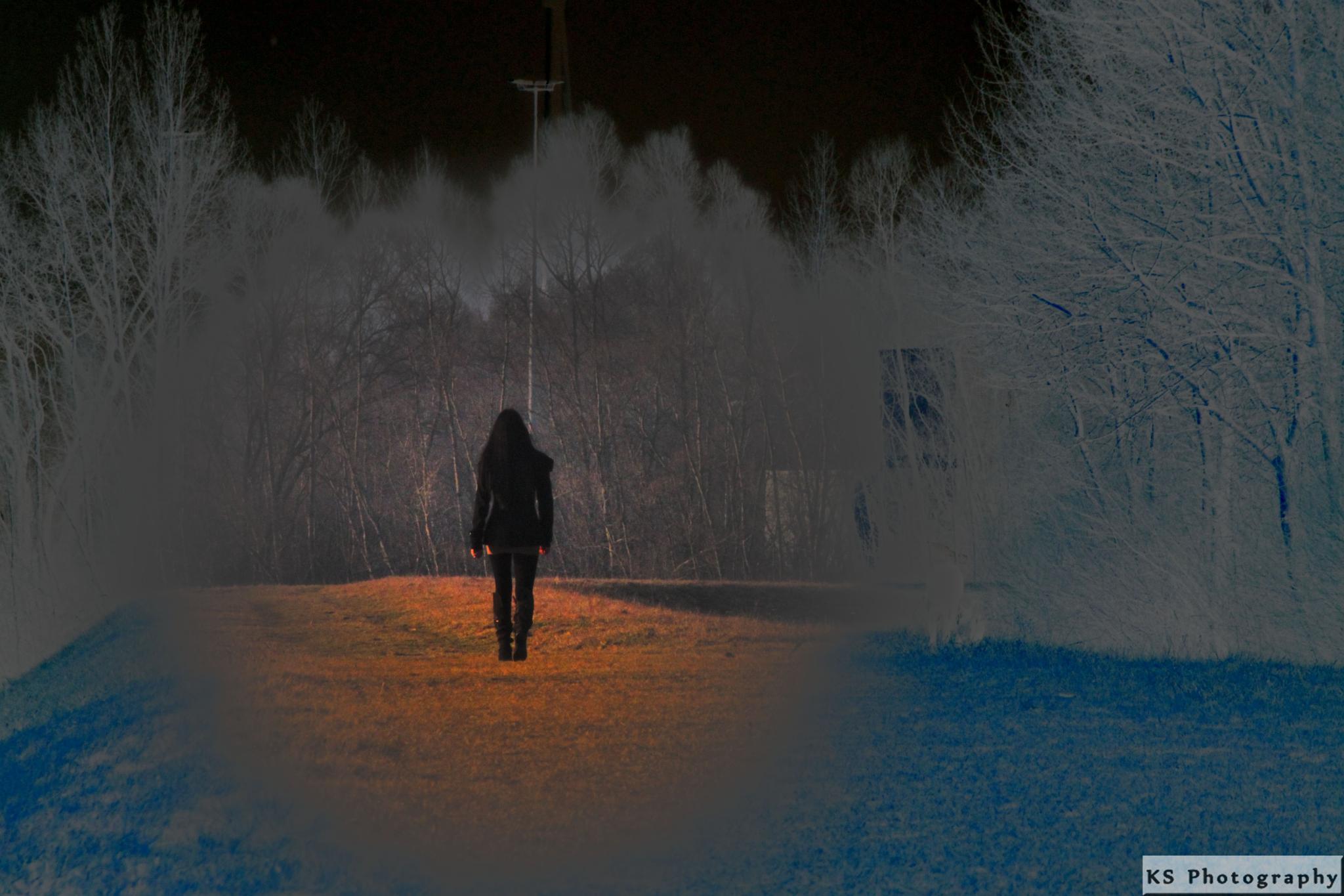 Light by Klaus Schenker