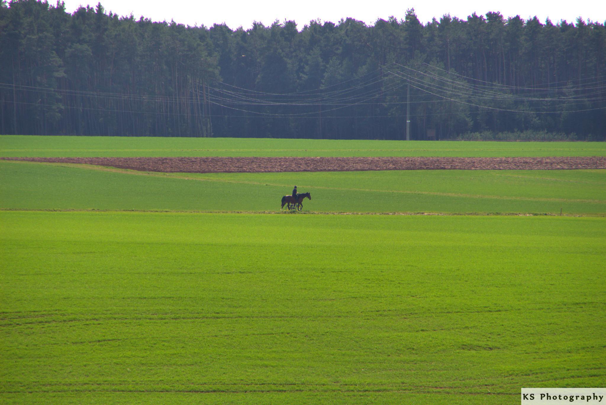 Lone rider by Klaus Schenker