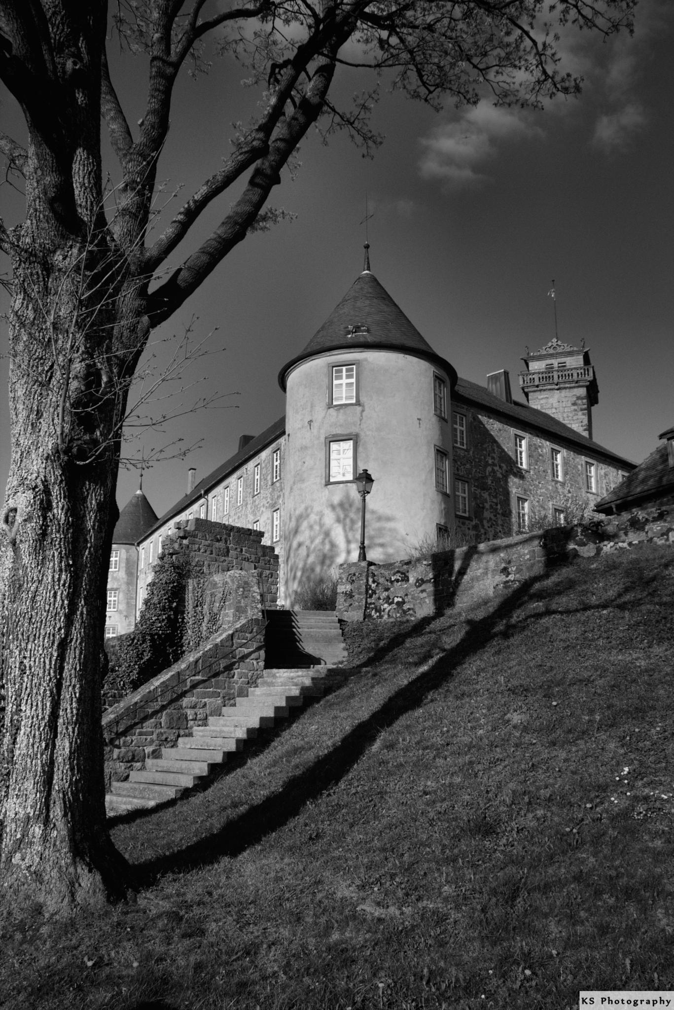 Waldenburg Castle by Klaus Schenker