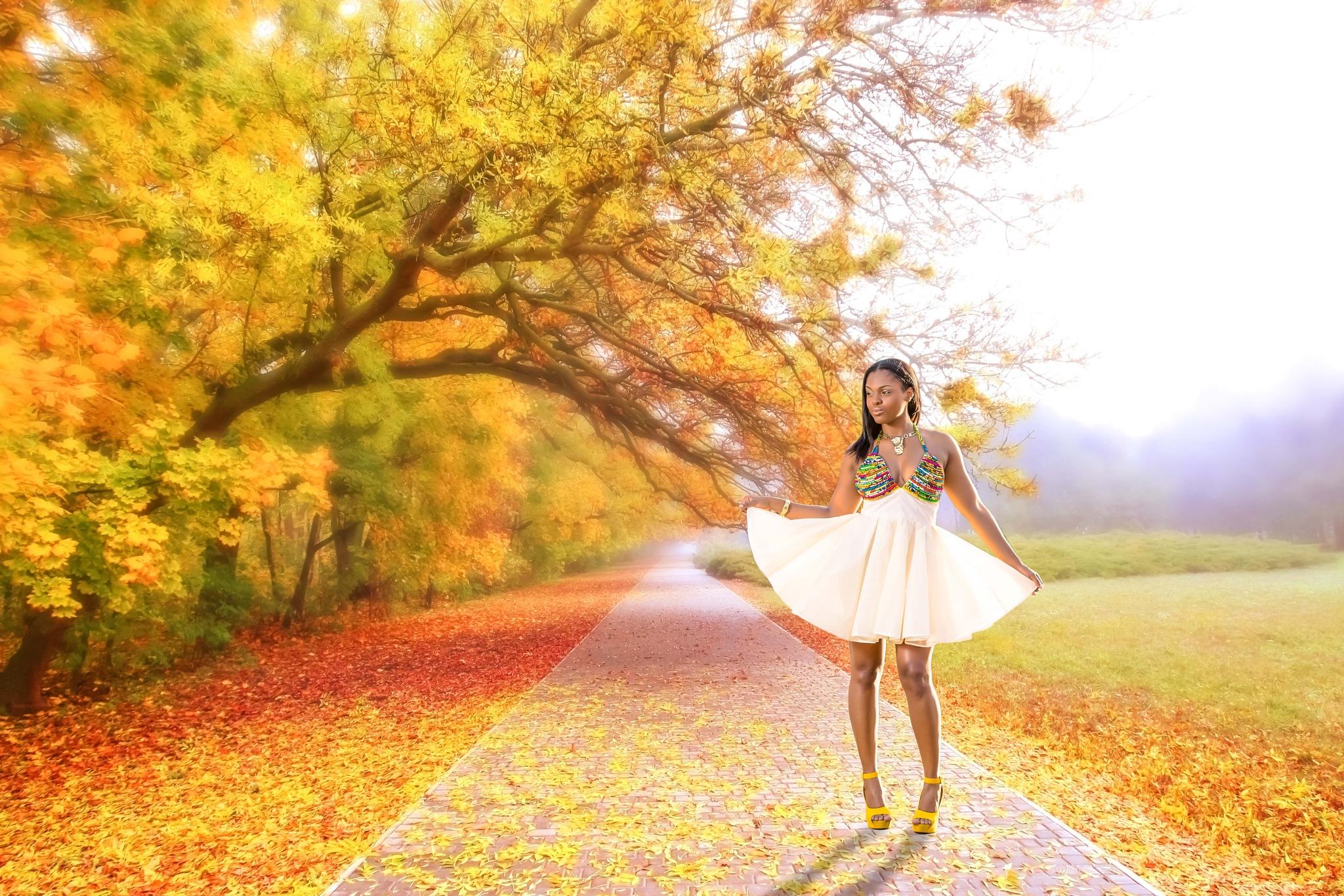 Autumn Leaves by RicardoBenjamin