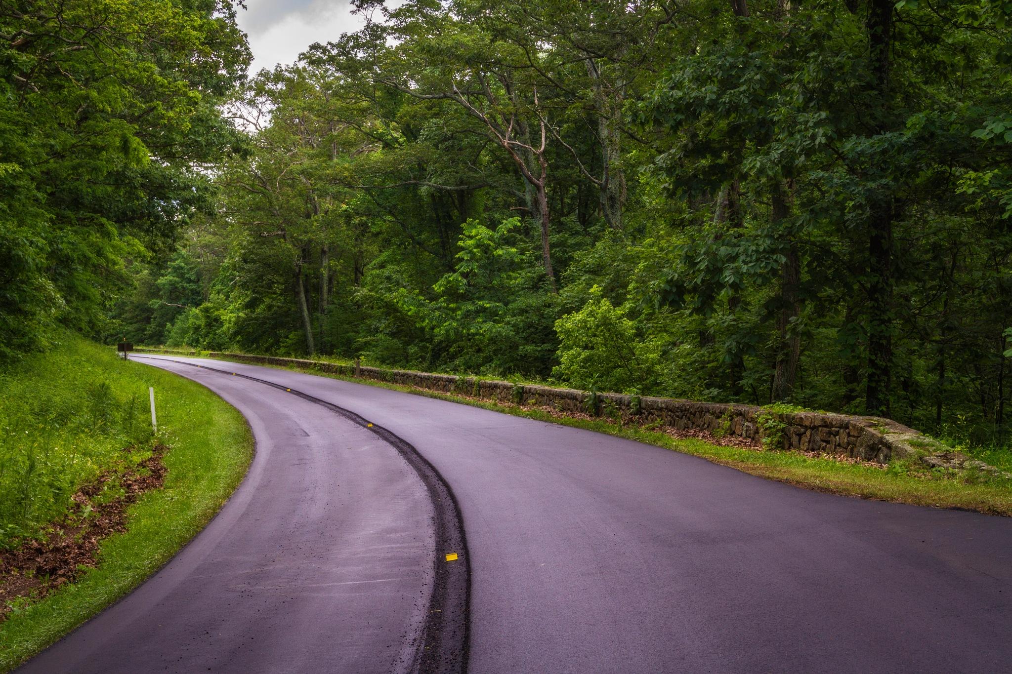 Shenandoah National Park by Jonathan Johannsen