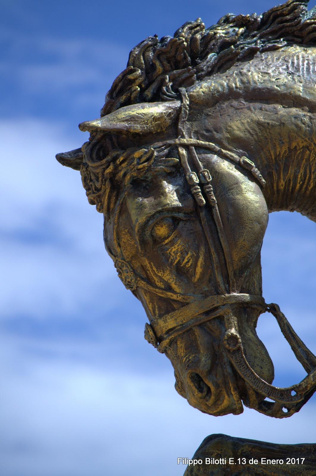 La nobleza del caballo. by FilippoBilottiE