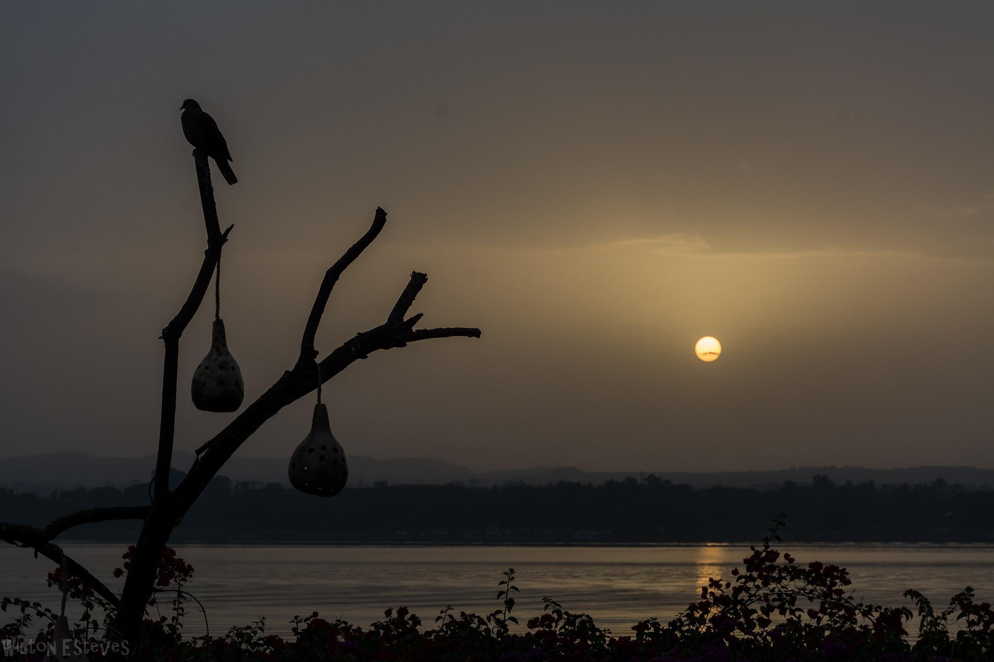 Lake Tana Sunrise 1 by Wilton Esteves