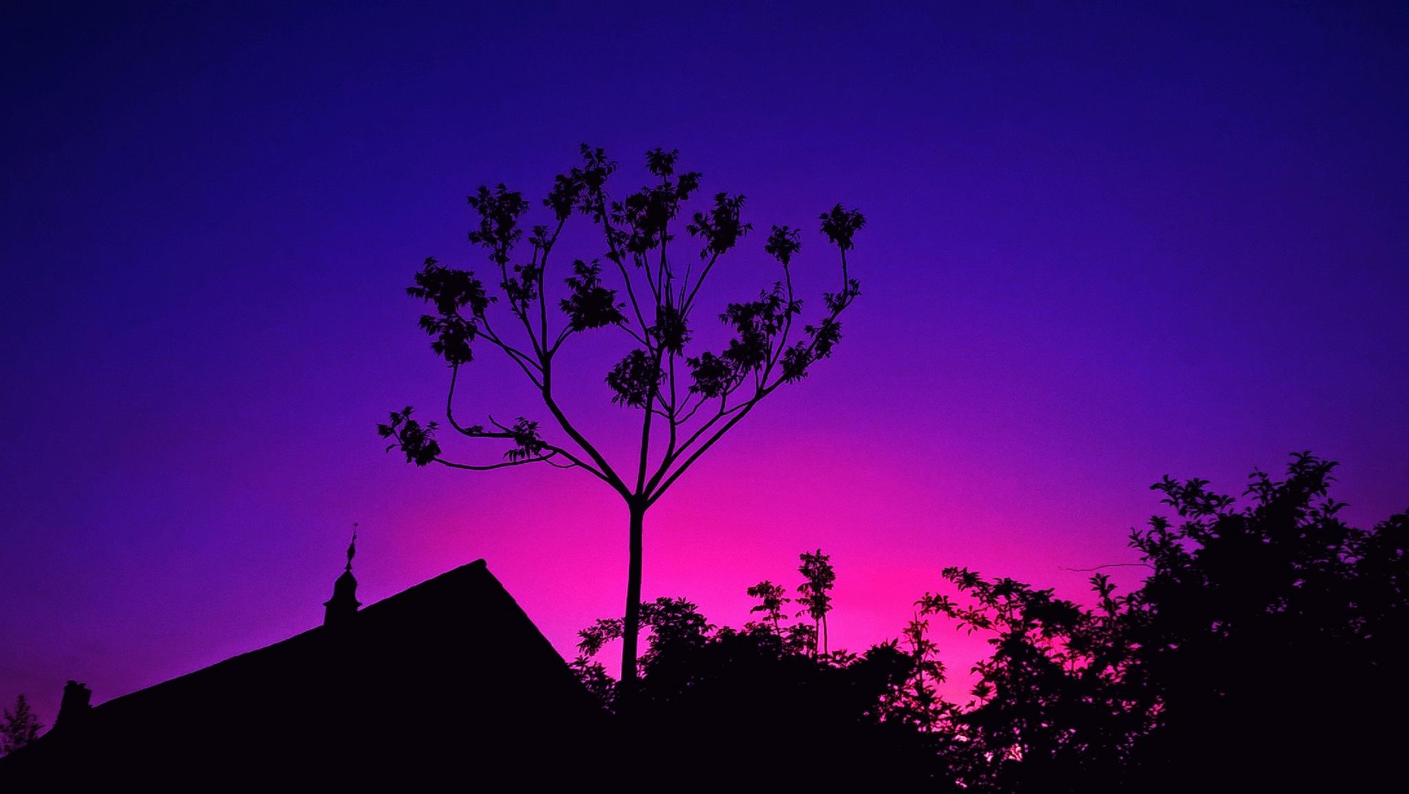 Night Sky by kiwimonkeyos