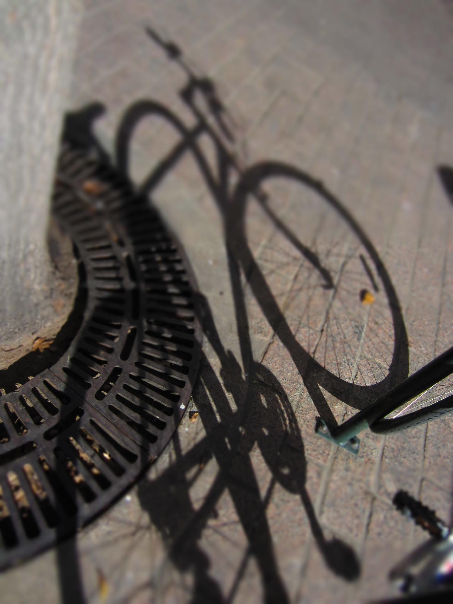 shadow biKe . . .  by keith sharp