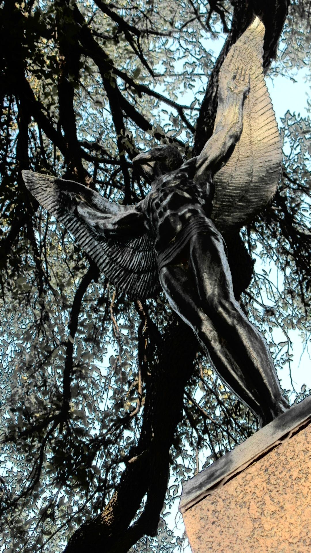 bLack aNgeL . . . take flight  by keith sharp