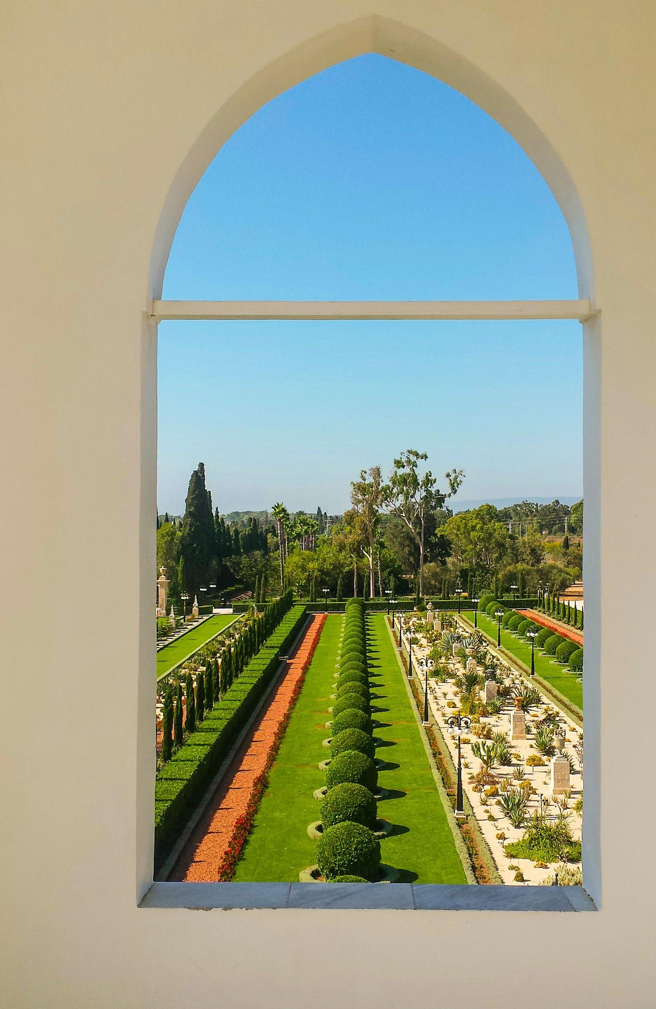 Garden View by Tom Dierolf