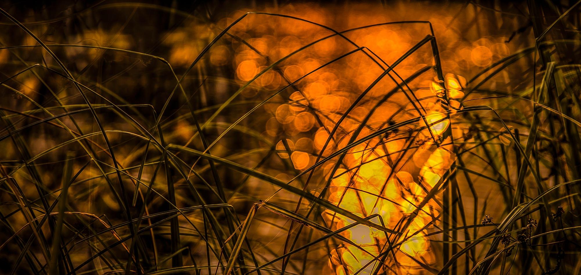 Пожар by Kley Sergey
