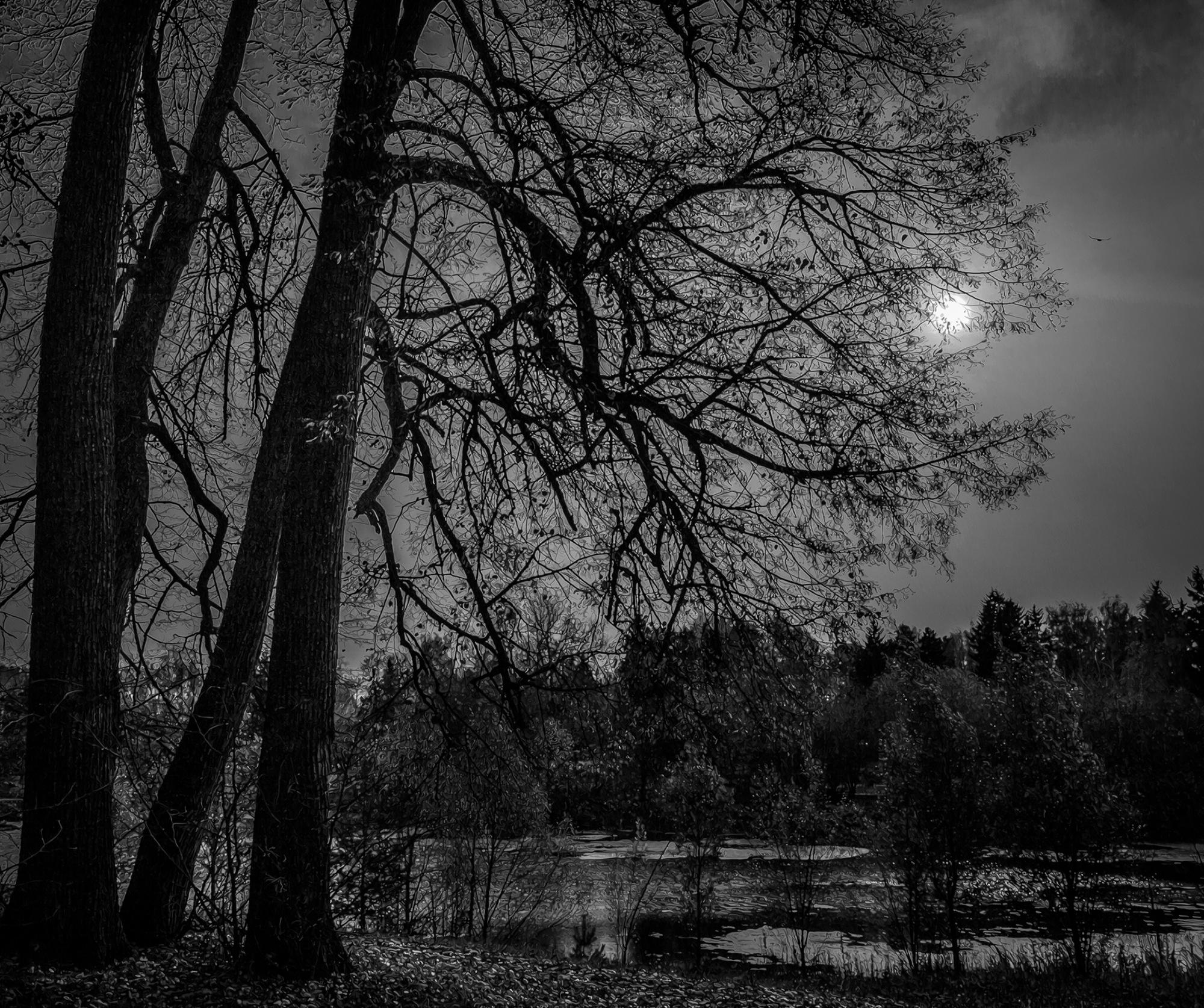 Черный ворон... by Kley Sergey
