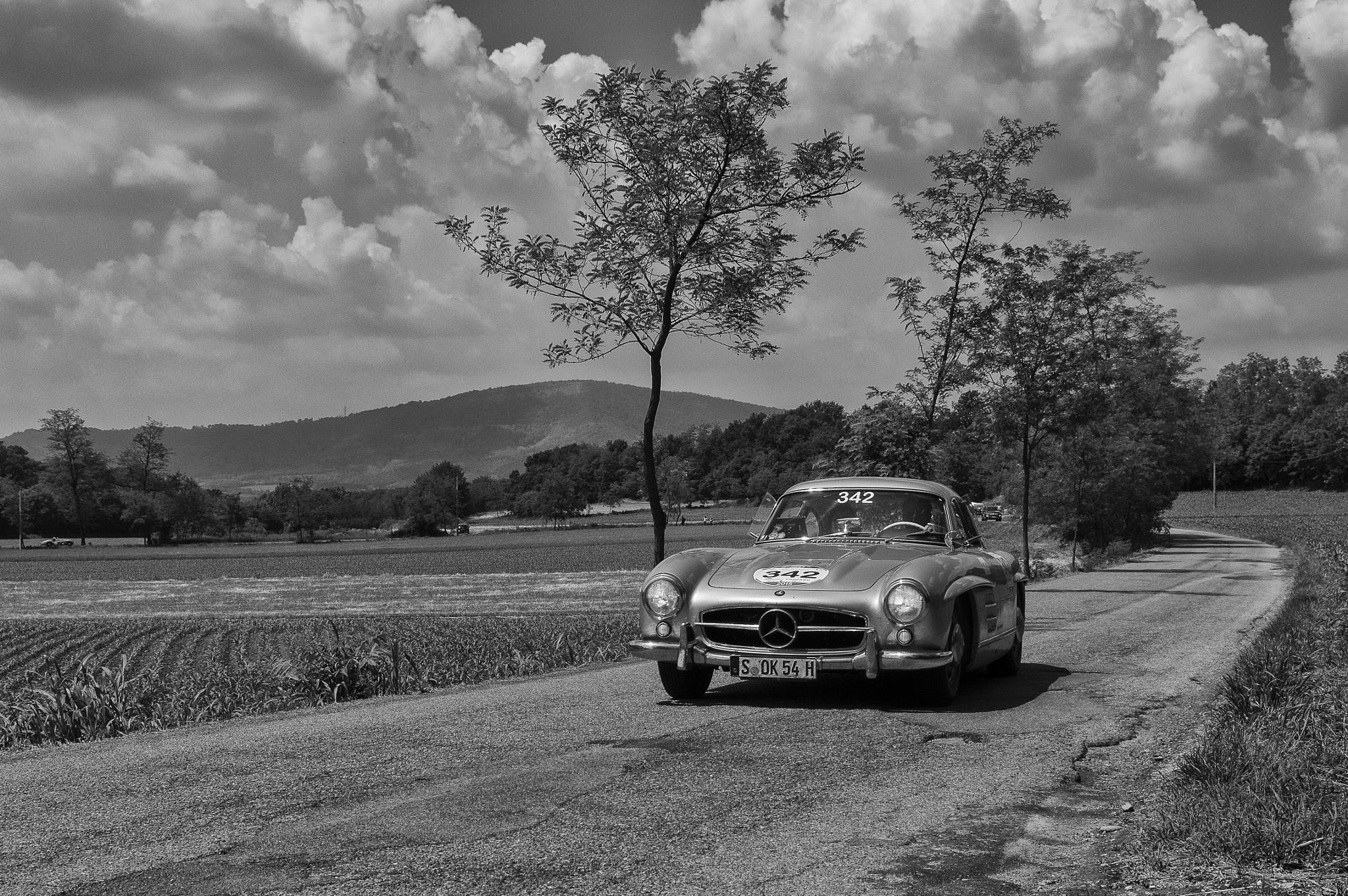 Photo in Sports #1000 miglia #cars #race #italy #black and white #mercedes-benz