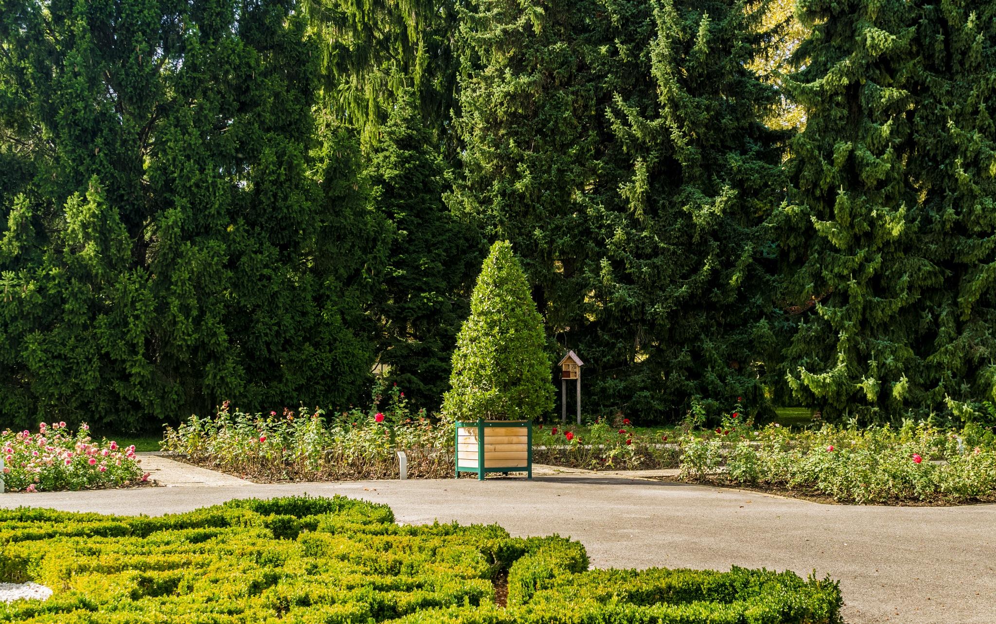 im Park wieder by karl1311