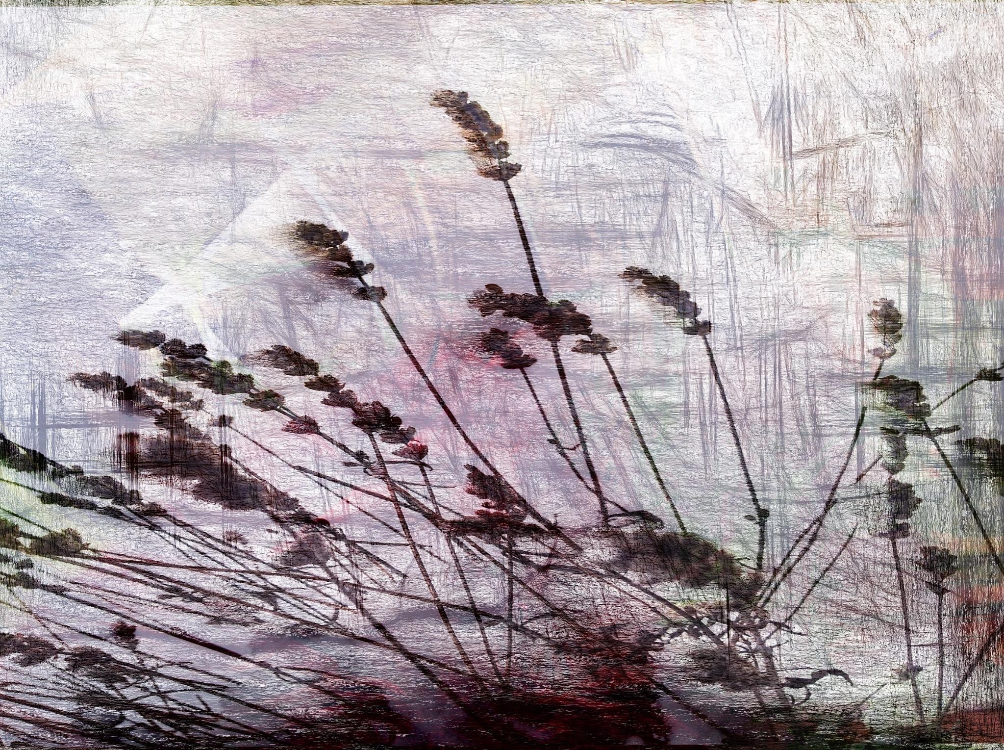 Untitled by Reinhard Südmersen